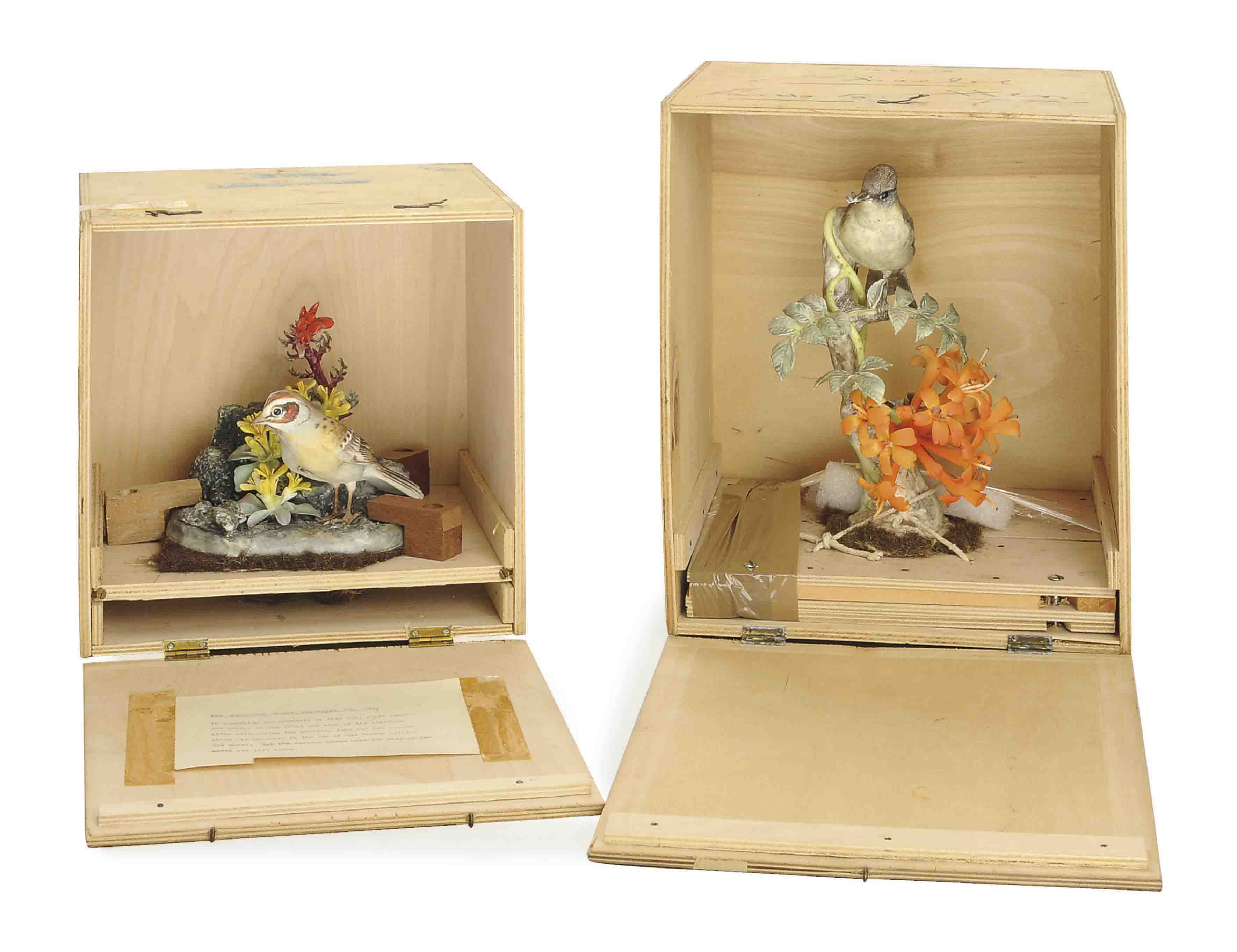THREE ENGLISH PAINTED PORCELAIN MODELS OF BIRDS AND A REFERENCE BOOK,