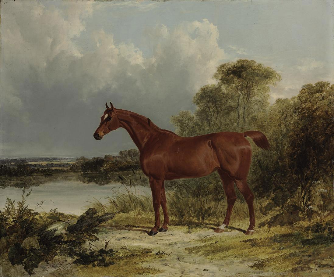 Sir William Earle's chestnut hunter in a landscape