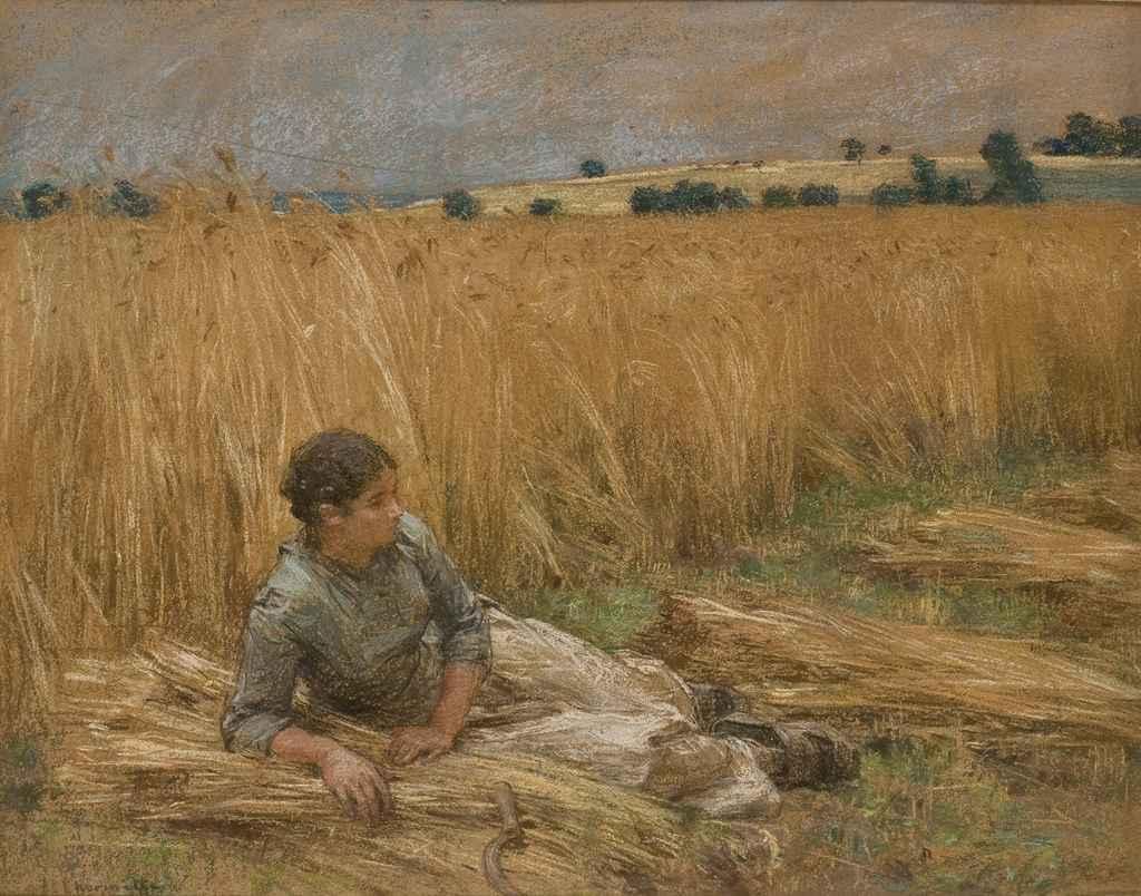 Moissonneuse assise dans un champ
