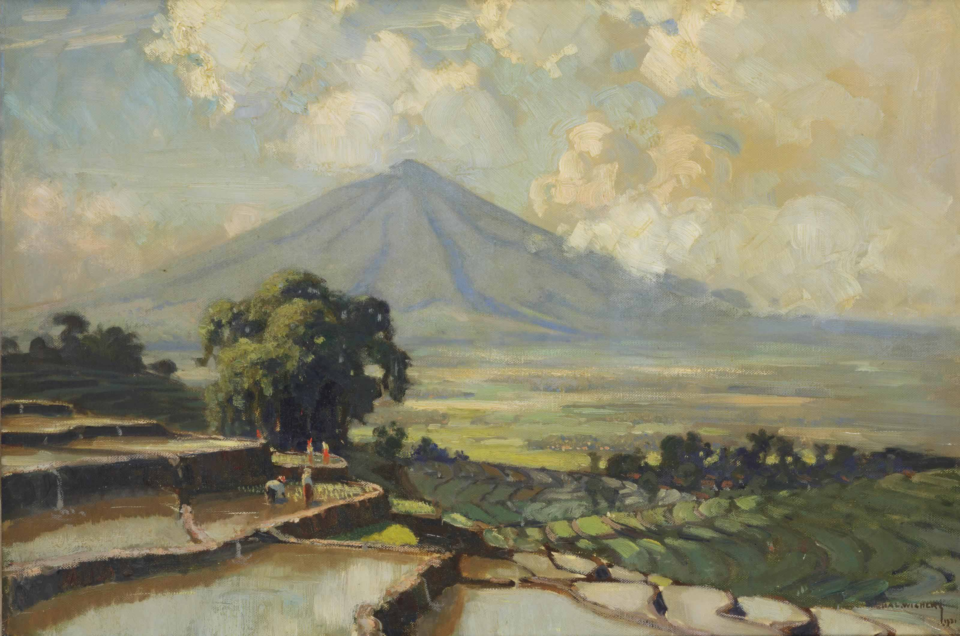 Rice paddies in Sawah, Java, with the Merapi in the distance