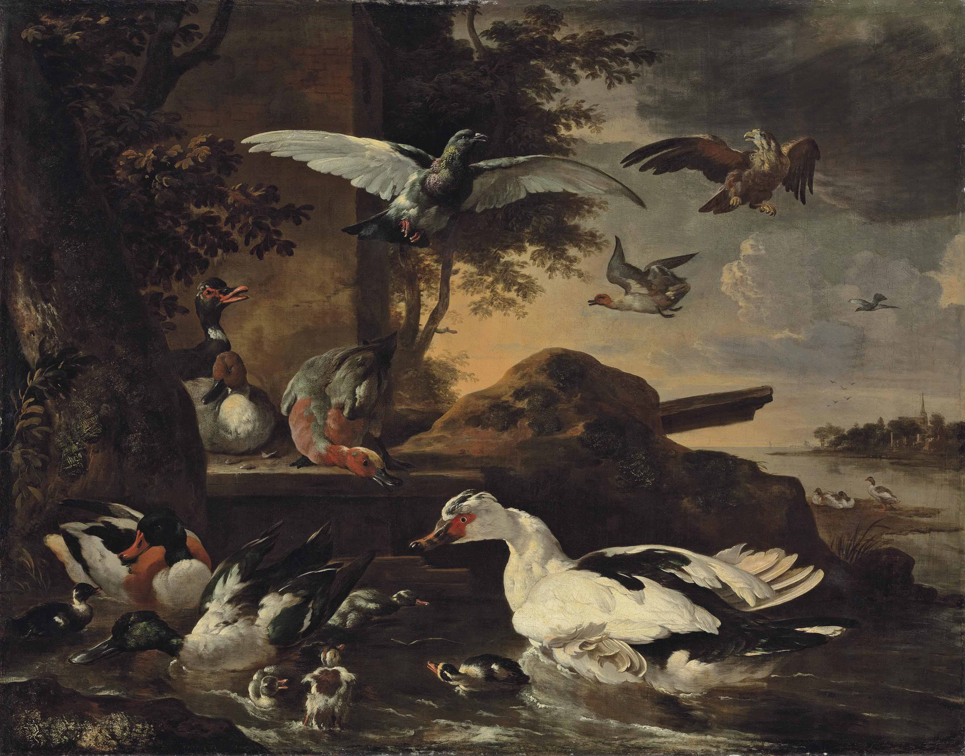 A shoveler, a Muscovy duck, a mallard, pochards and other waterfowl with ducklings on the banks of a river, with a pigeon and a bird of prey in the air