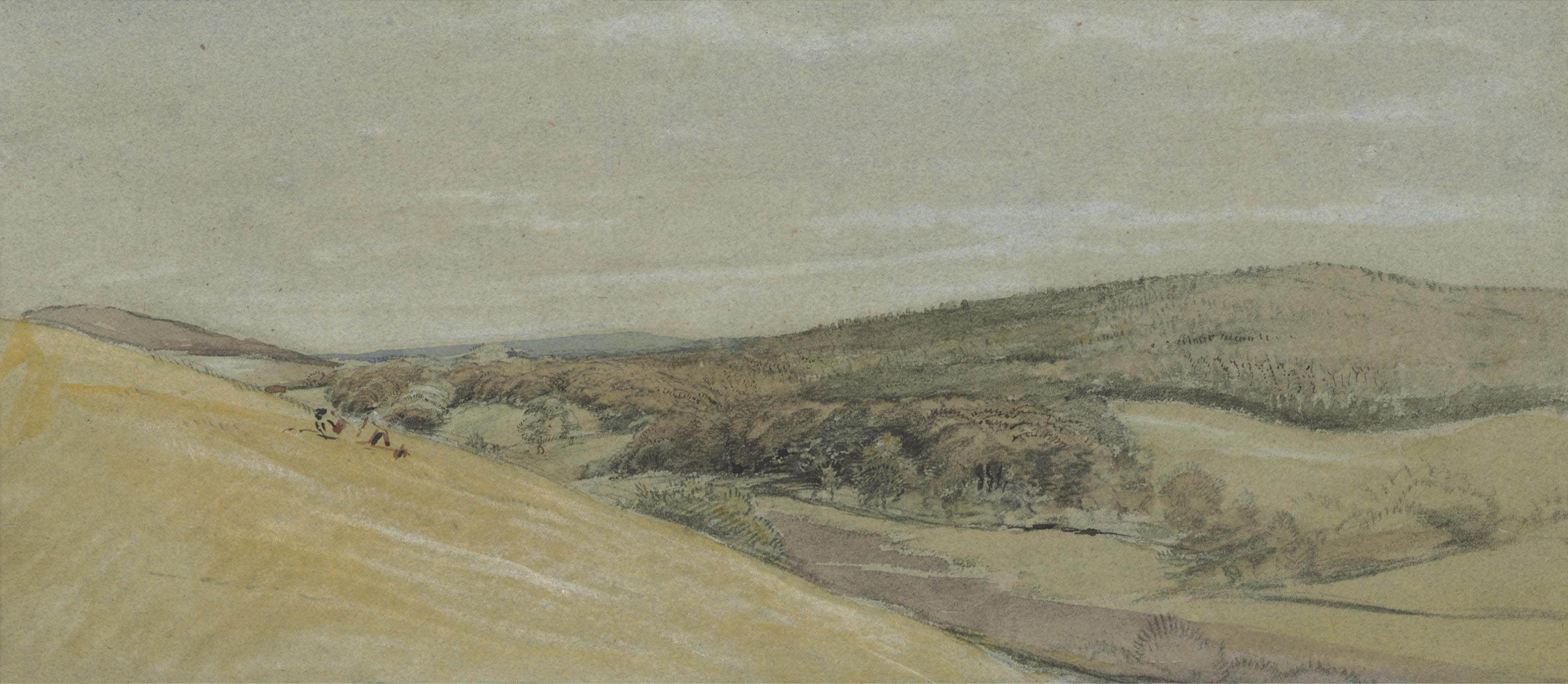 View across a wooded valley