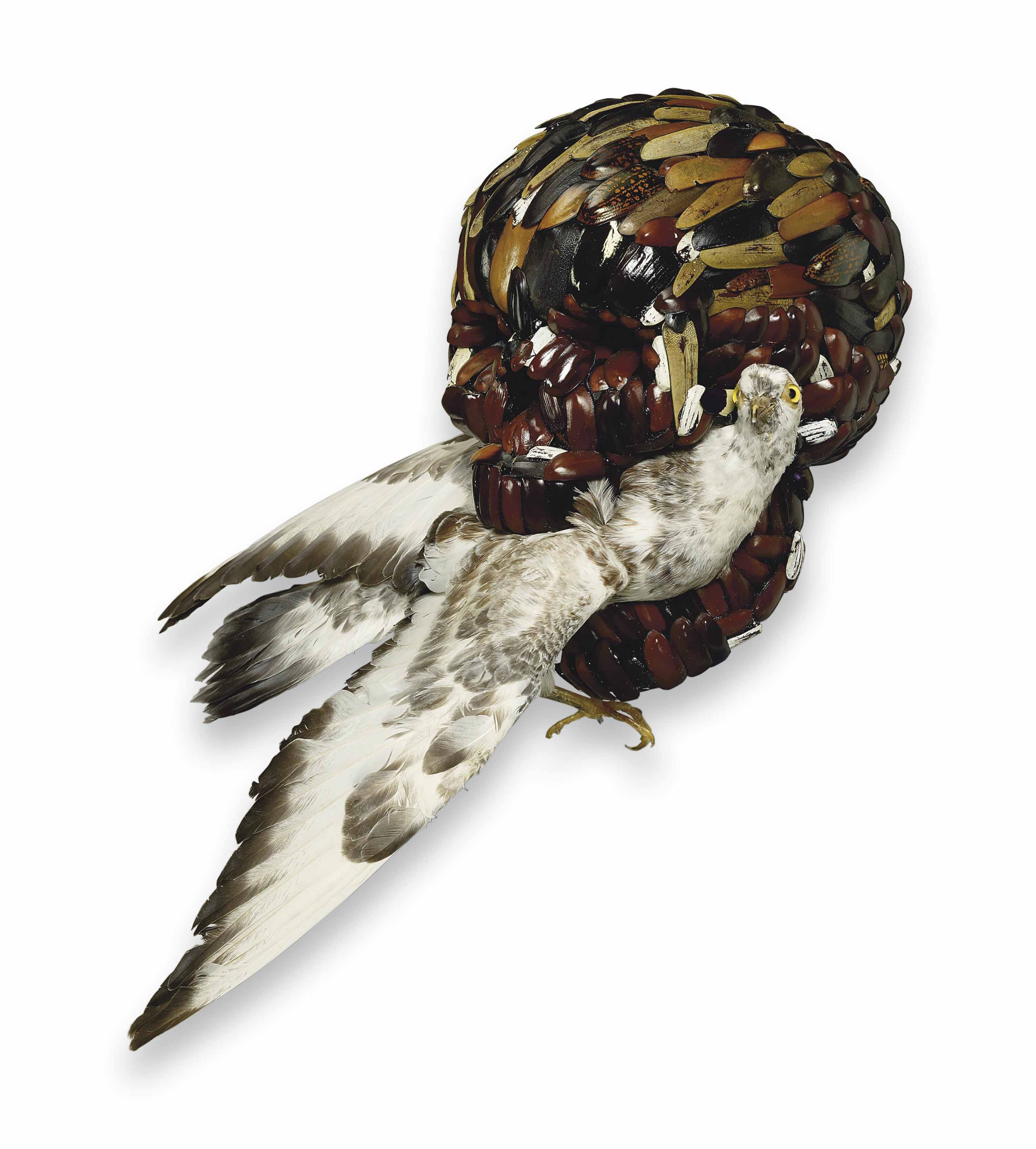 L'Oisillon de Dieu (The Little Bird of God)