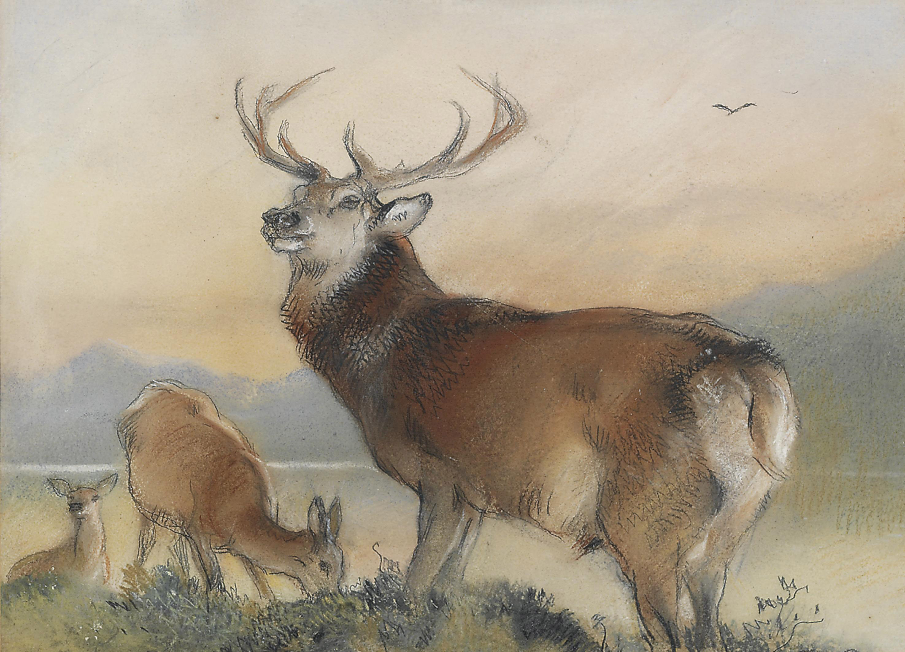 A stag and two hinds before a loch