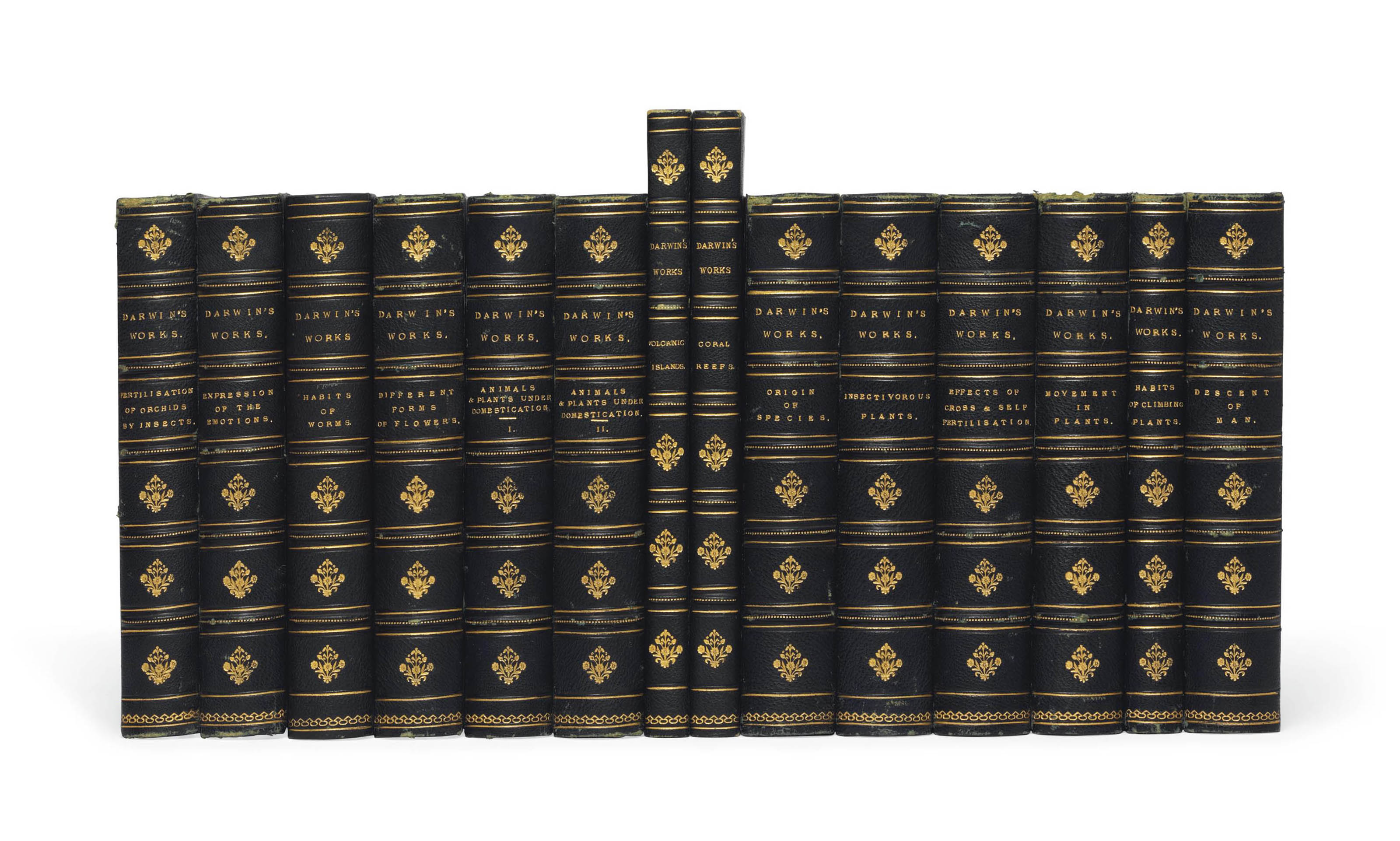 DARWIN, Charles (1809-1882). A collection of 13 of his works in 14 volumes, 19th-century editions, all published in London, and all by John Murray, excepting the first two named works: The Structure and Distribution of Coral Reefs. Smith, Elder and Co., 1842. FIRST EDITION. Freeman 271. -- Geological Observations on the Volcanic Islands. Smith, Elder and Co., 1844. FIRST EDITION. Freeman 272. -- The Expression of the Emotions of Man and Animals. 1872. FIRST EDITION, second issue, plates numbered in Arabic. (Lacking the last two leaves of integral advertisements.) Freeman 1142. -- The Variation of Animals and Plants Under Domestication ... Second edition, revised, fourth thousand. 1875. 2 volumes. Freeman 880. -- Insectivorous Plants ... third thousand. 1875. Half-title, errata slip. Freeman 1219. -- The Movements and Habits of Climbing Plants ... second thousand. 1876. Half-title. Reprint of the second edition. Freeman 837. -- The Effects of Cross and Self Fertilisation in the Vegetable Kingdom. FIRST EDITION. 1876. Errata leaf. Freeman 1249. -- The Various Contrivances by which Orchids are Fertilised by Insects ... Second edition, revised. 1877. Half-title. Freeman 801. -- The Different Forms of Flowers on Plants of the Same Species. 1877. FIRST EDITION. Freeman 1277. -- The Descent of Man, and Selection in Relation to Sex ... Second edition (thirteenth thousand), revised and augmented. London: 1879. Half-title. Freeman 951. -- The Power of Movement in Plants. 1880. Half-title. FIRST EDITION. Freeman 1325. -- The Origin of Species by means of Natural Selection ... Sixth edition, with additions and corrections to 1872 (twenty-second thousand). 1880. Half-title. Freeman 405. -- The Formation of Vegetable Mould through the action of Worms ... Third thousand. 1881. Errata slip. Freeman 1359. 13 volumes, 8° (first two named works 215 x 133mm; the remainder 184 x 125mm excepting Descent of Man 184 x 115mm). Uniformly bound in late 19th-century dark-green half morocco ove