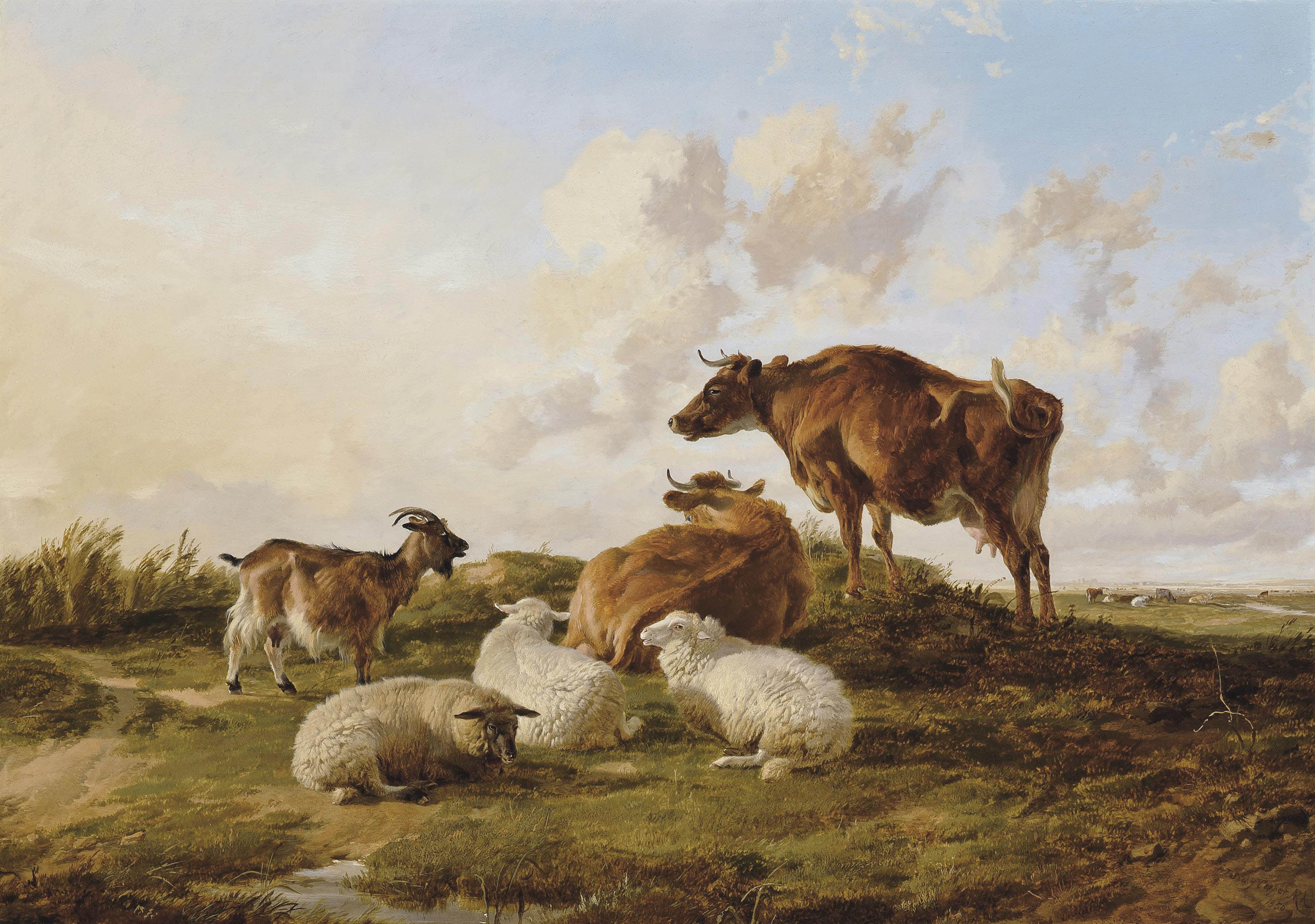 Cows, sheep and goat