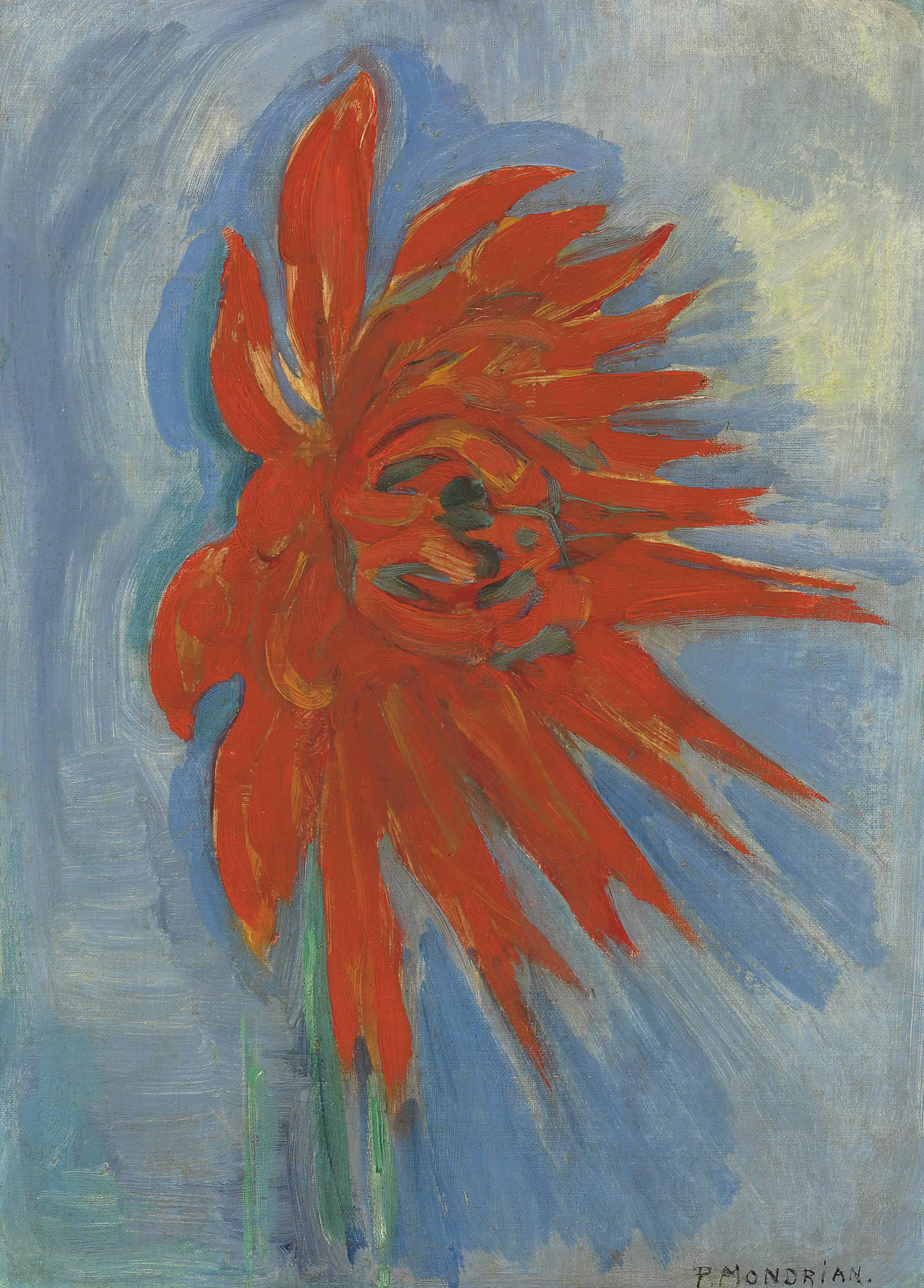 Red Chrysanthemum on Blue Background
