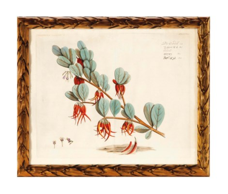 THREE ANGLO-INDIAN PAINTINGS O