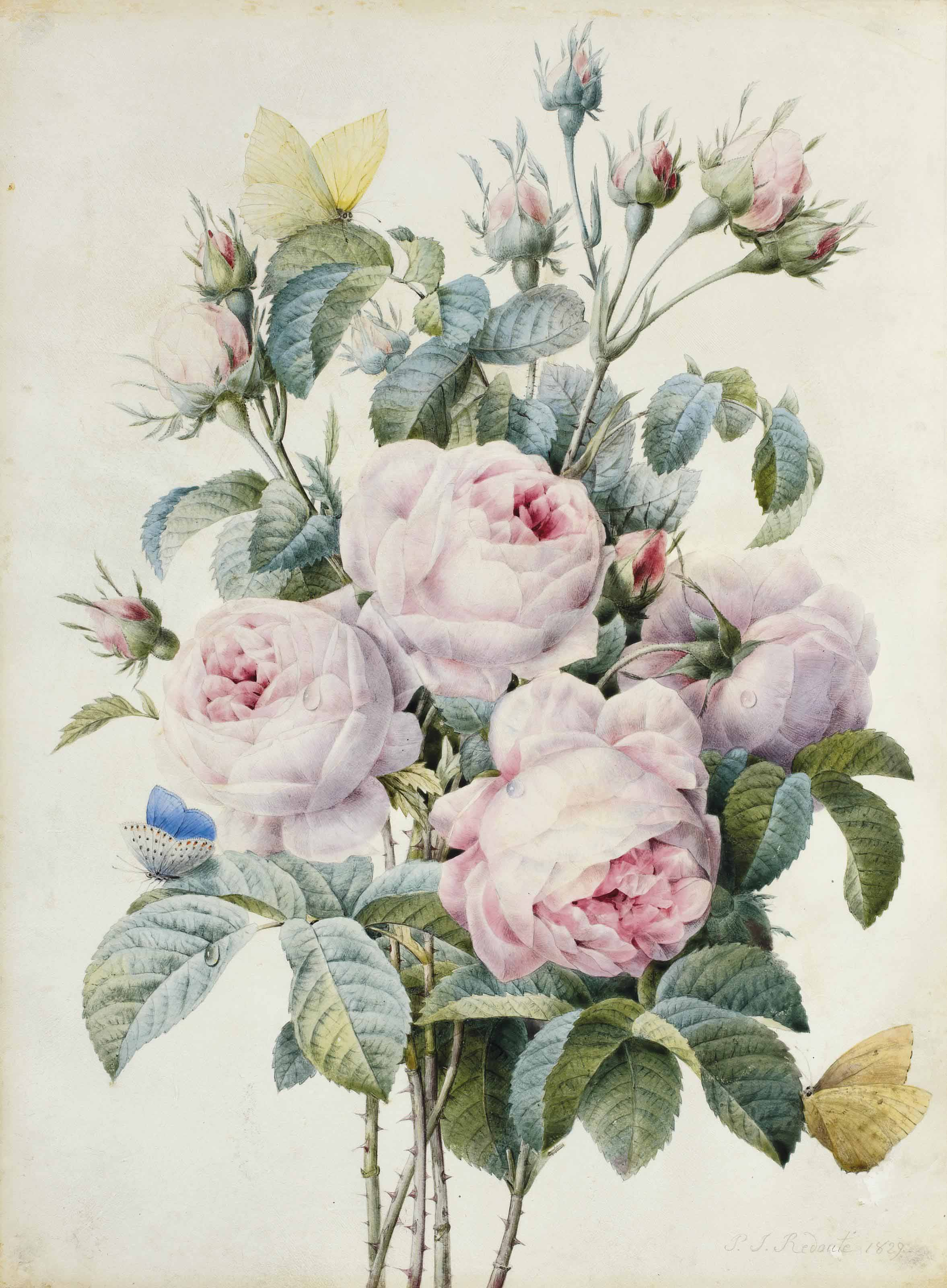 Bouquet de roses et papillons
