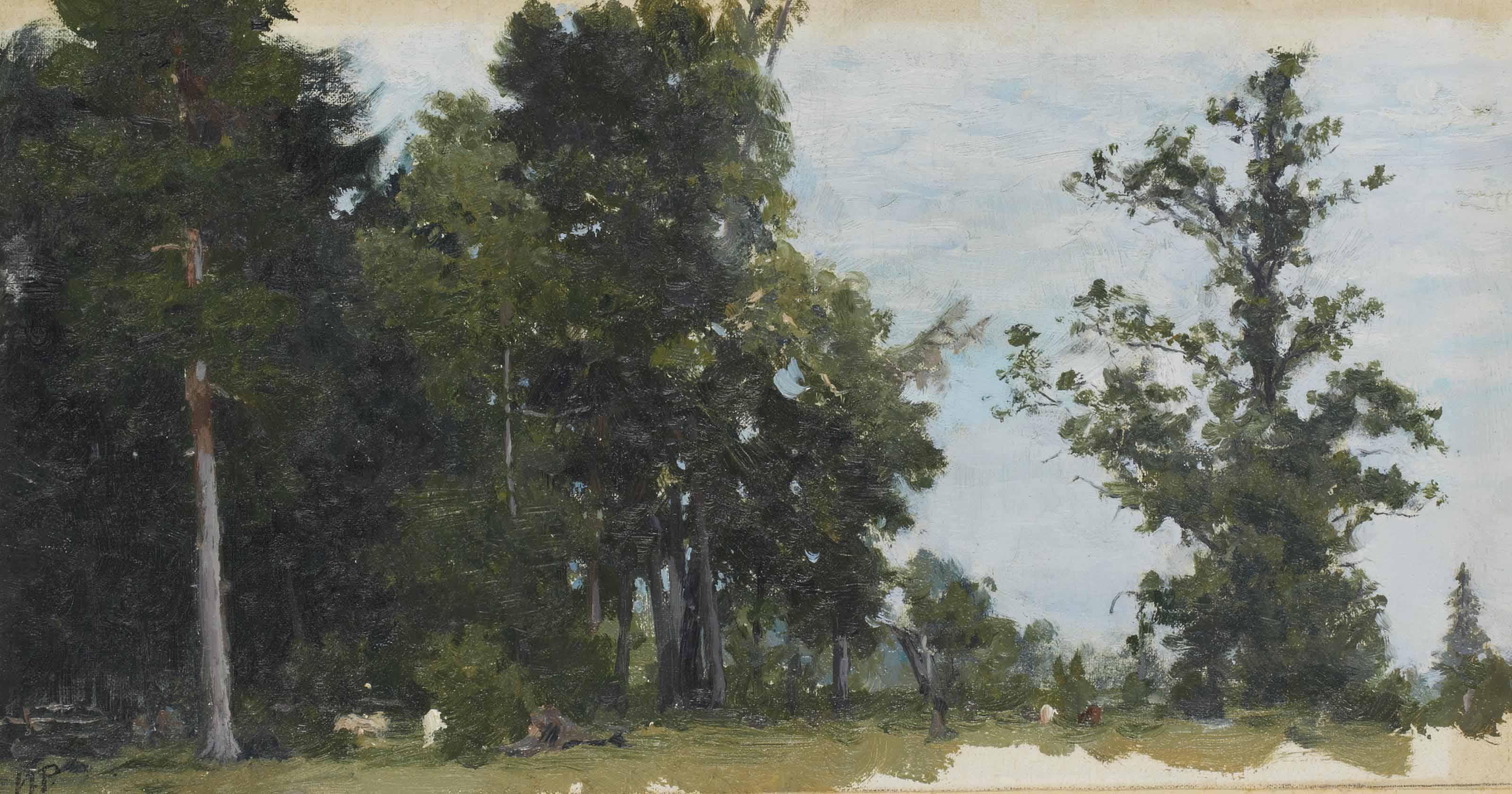 The forest, Zdravnevo