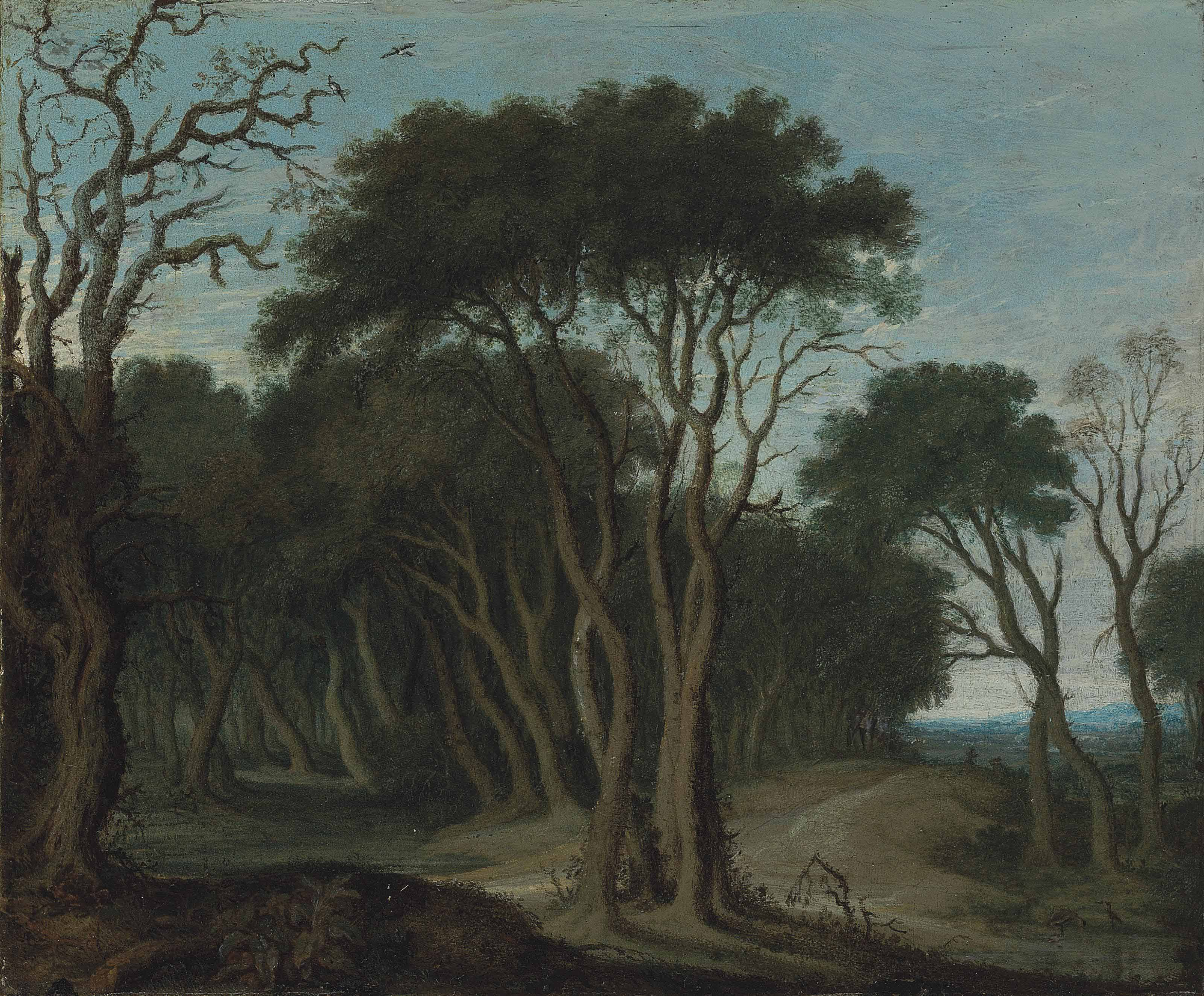 A wooded landscape with a path running through