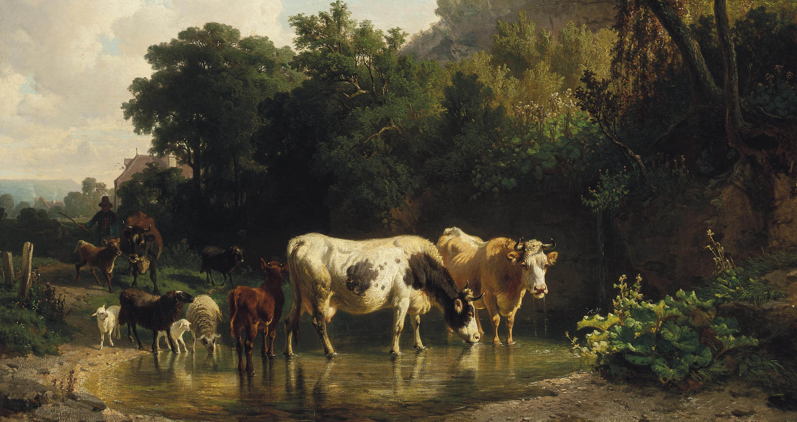 Watering livestock at the stream