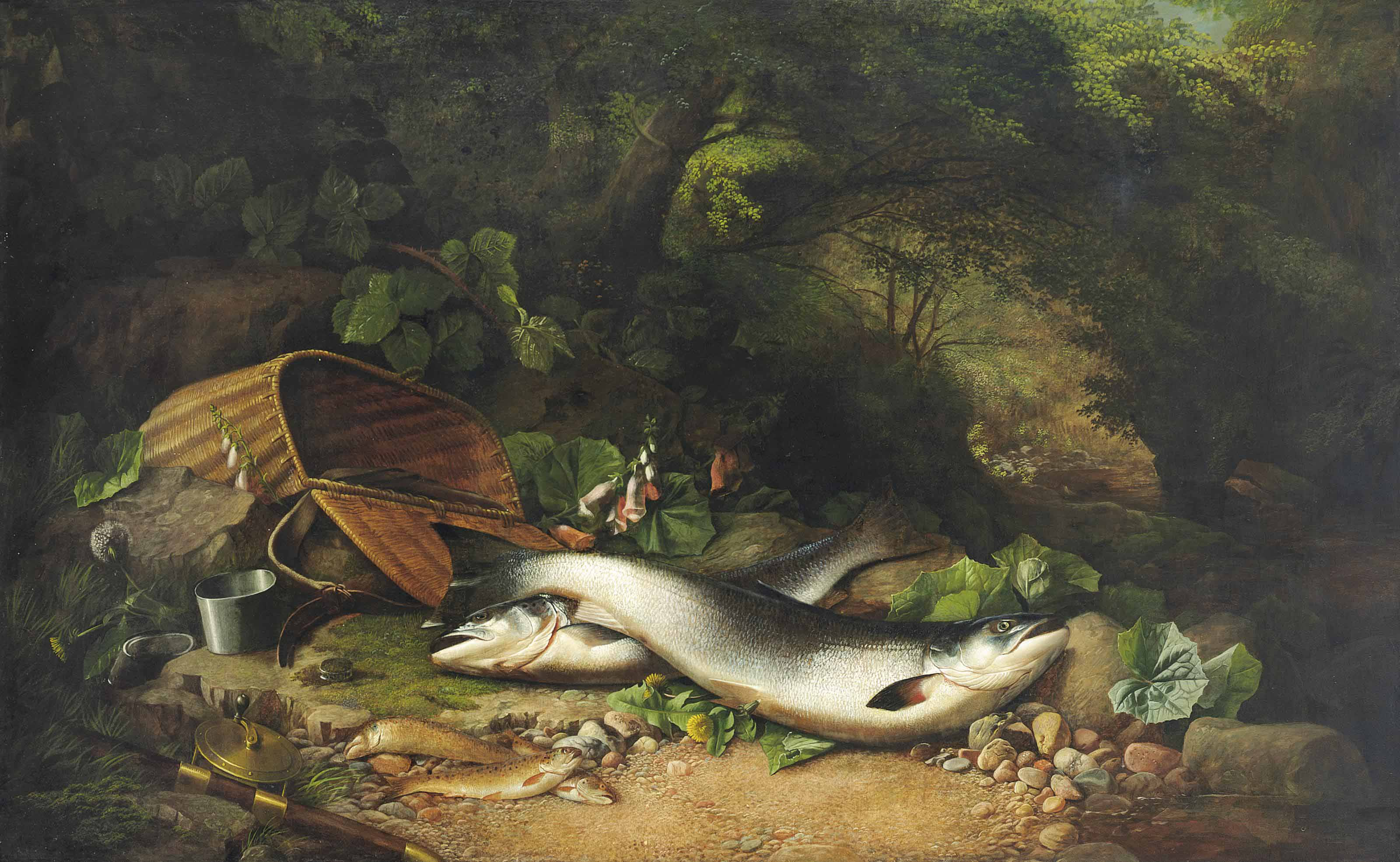 Salmon and trout on a riverbank