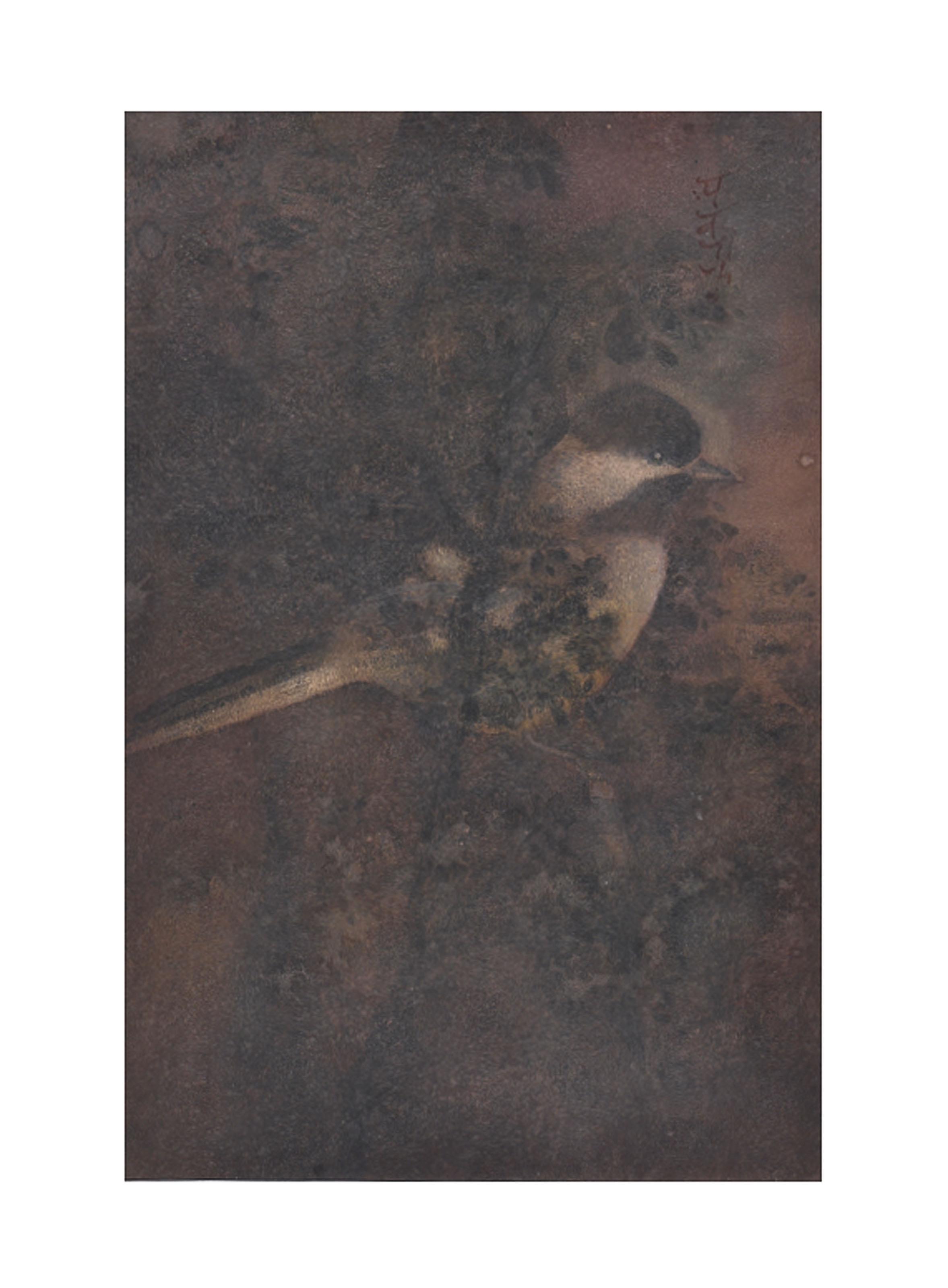 Untitled (Bird on Tree)