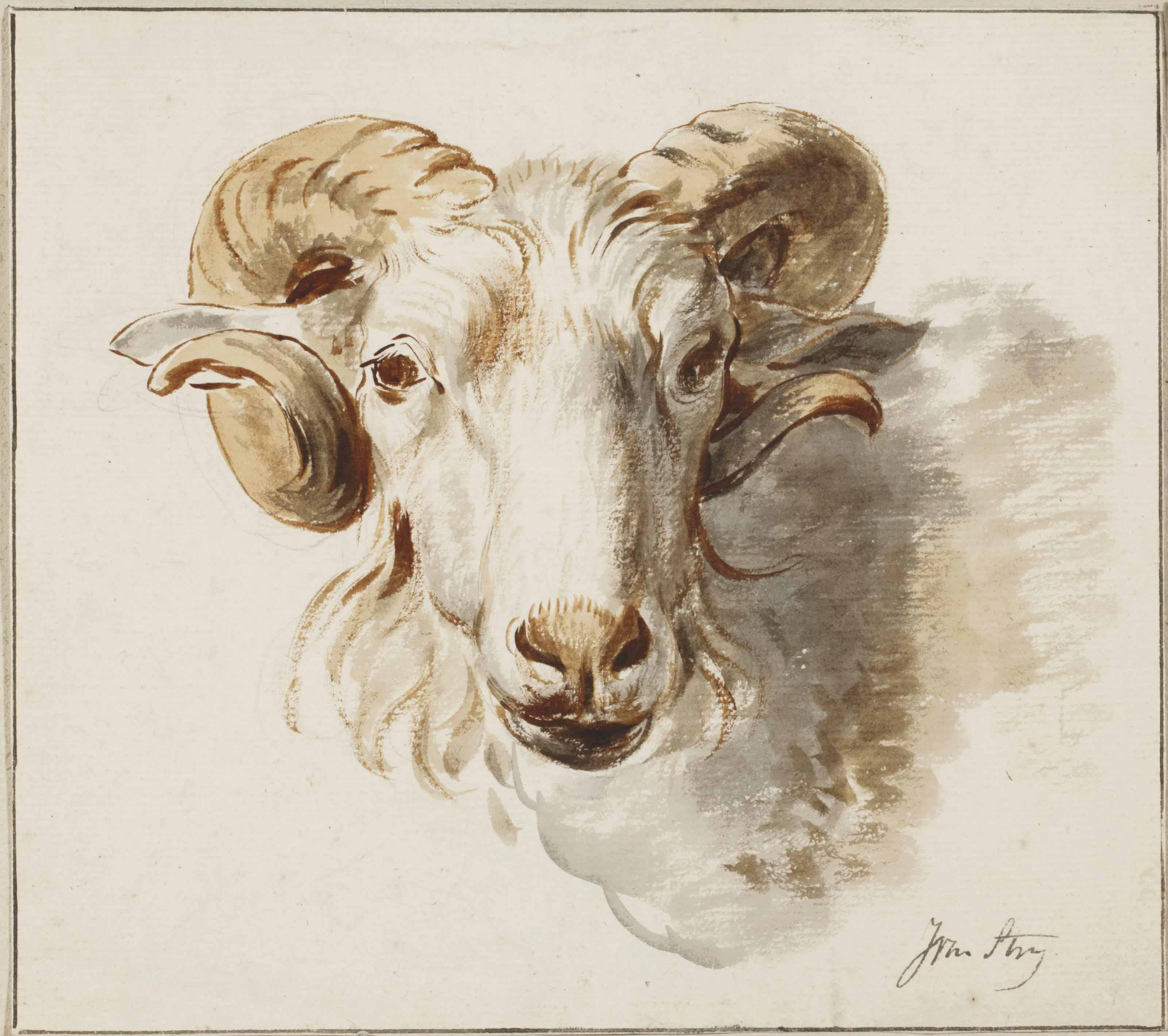 The head of a ram; and The head of a sheep (pl. 5)