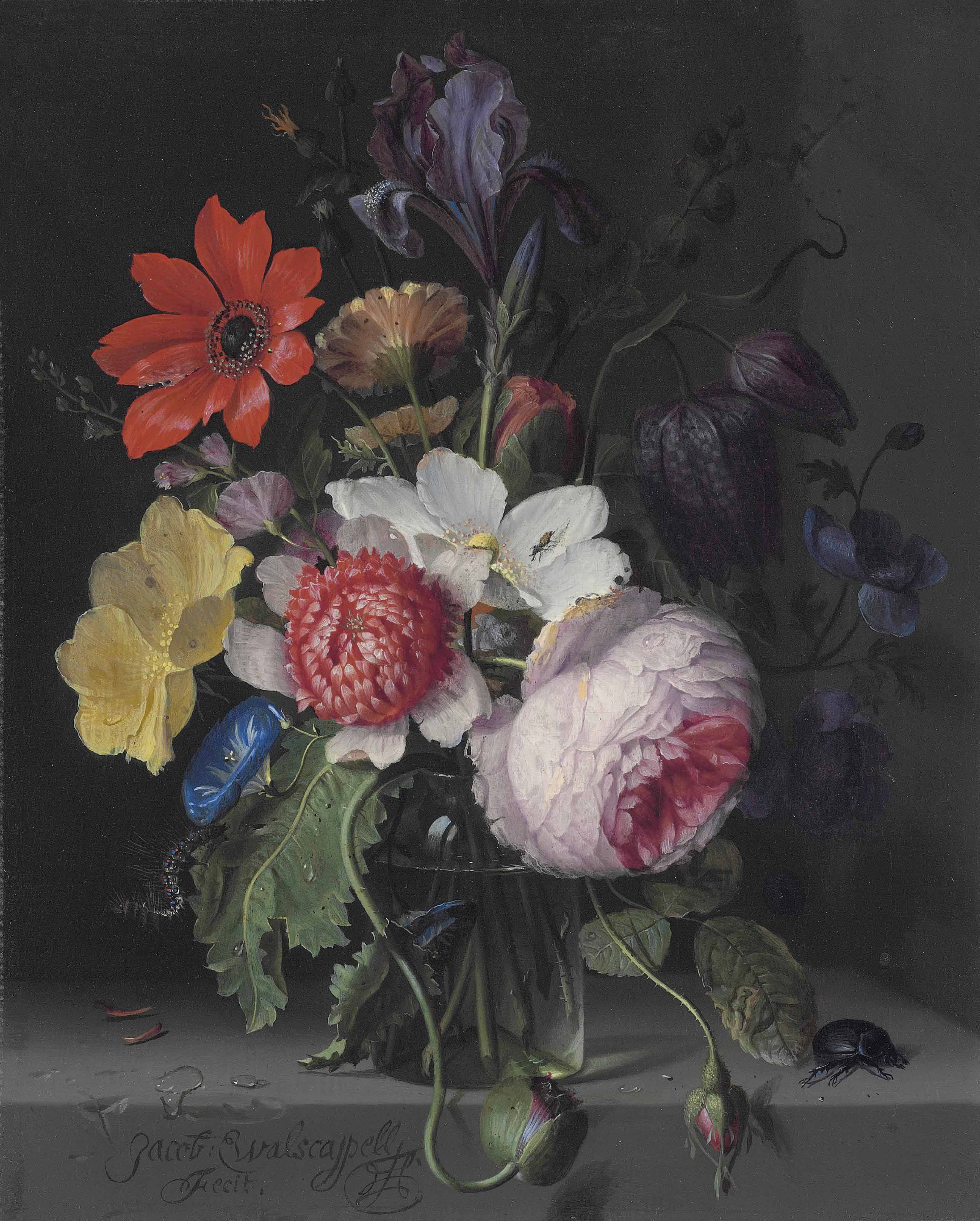 A peony, an iris, a poppy, anemones, morning glory and other flowers, in a glass vase, with a caterpillar, a beetle and other insects, on a stone ledge