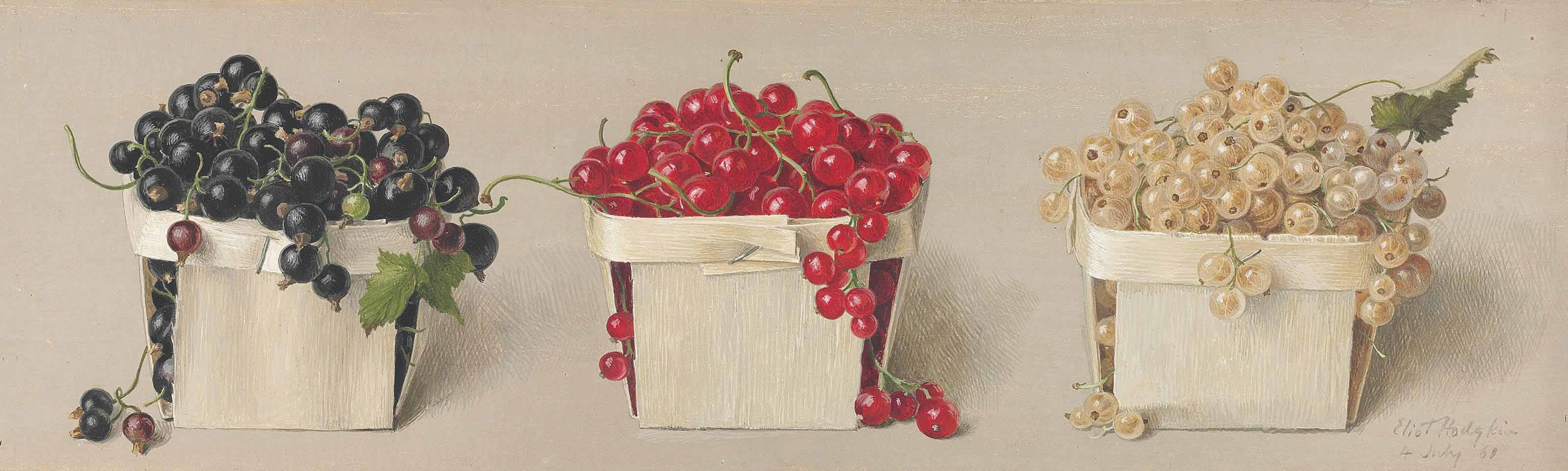 Still life with black, red and white currants