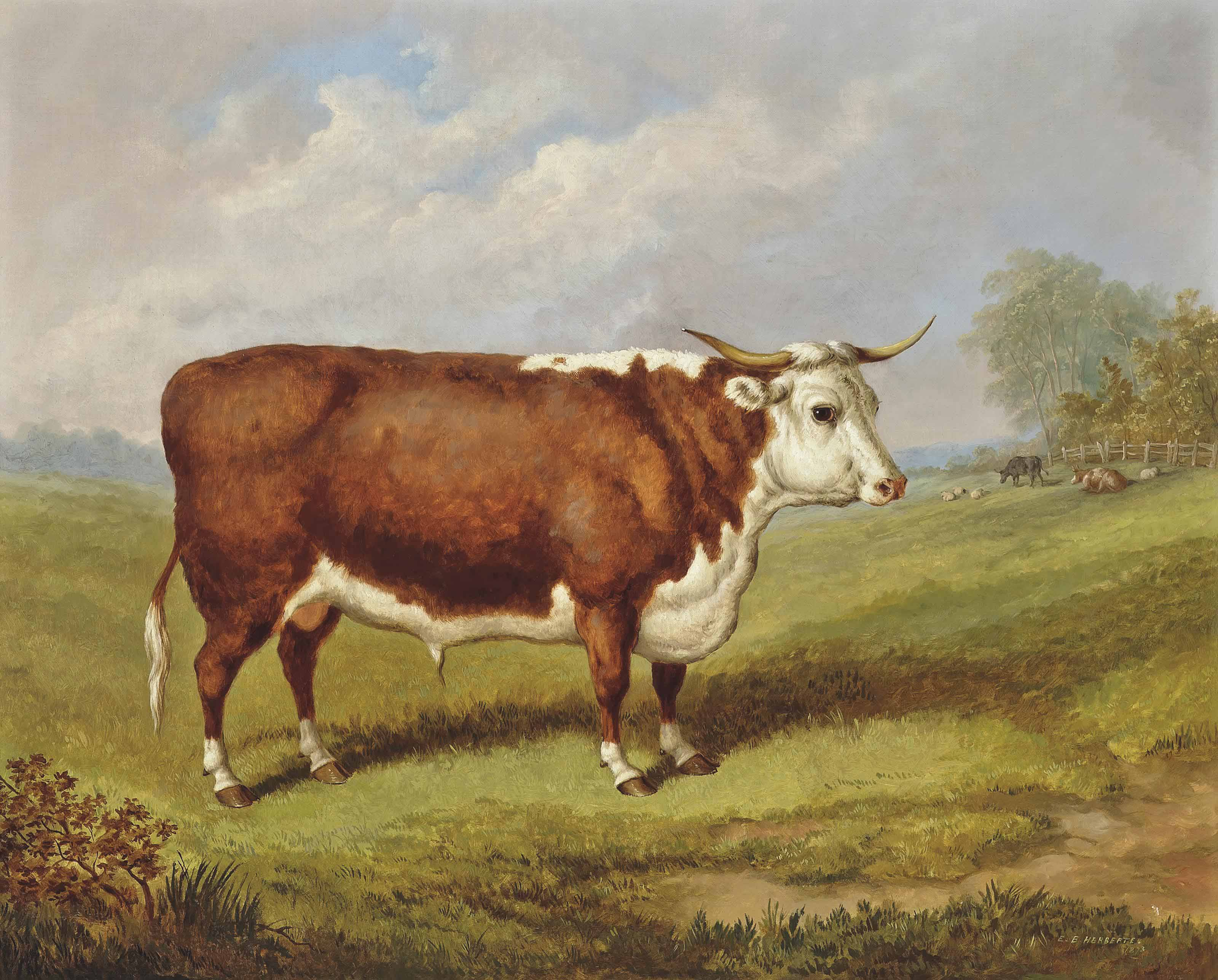 The prize bull