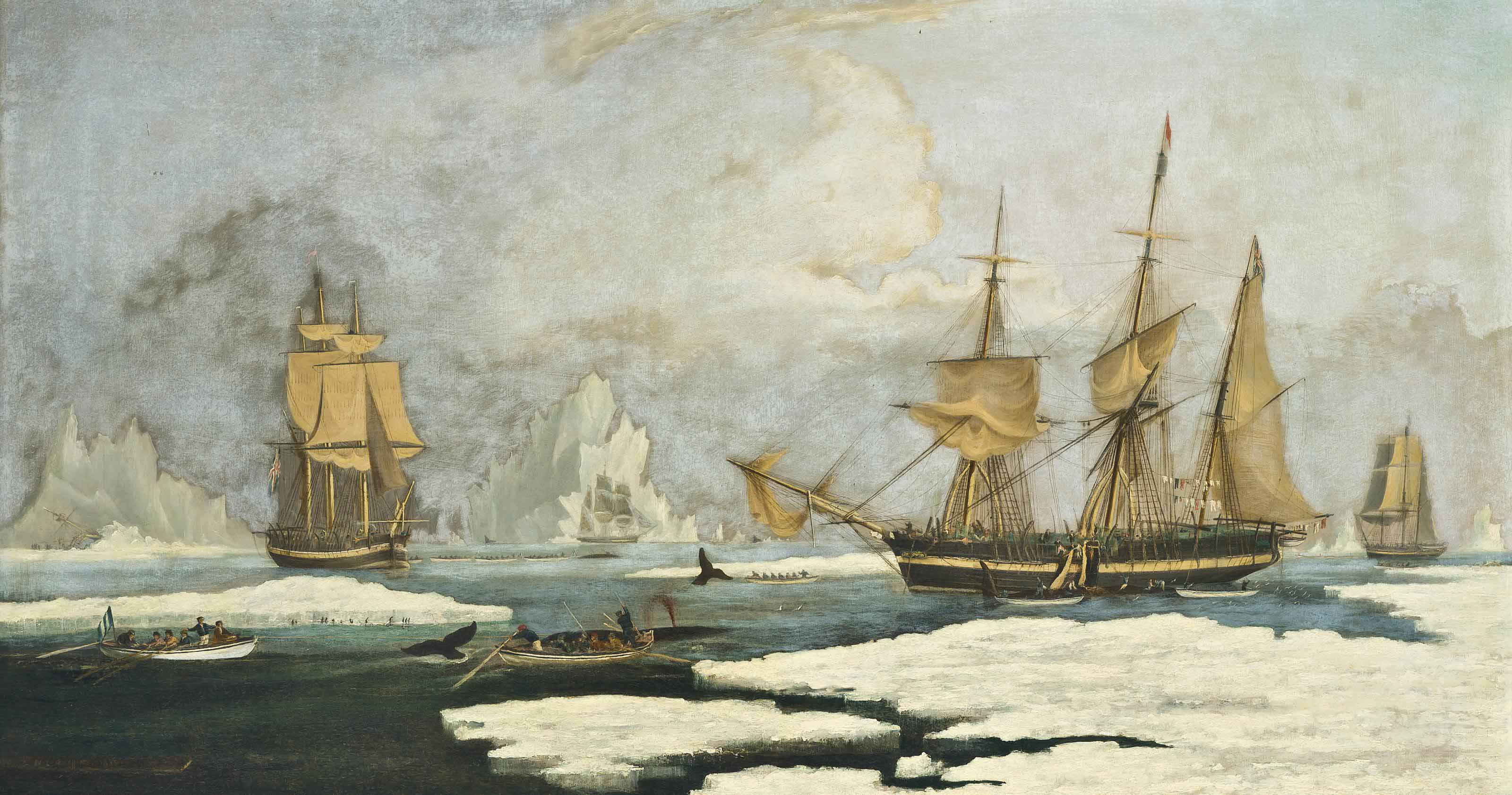 The Northern Whale Fishery: The ship Harmony of Hull and other ice-bound whalers, hunting seals, narwhals and whales on the Davis Straits whaling ground off Greenland