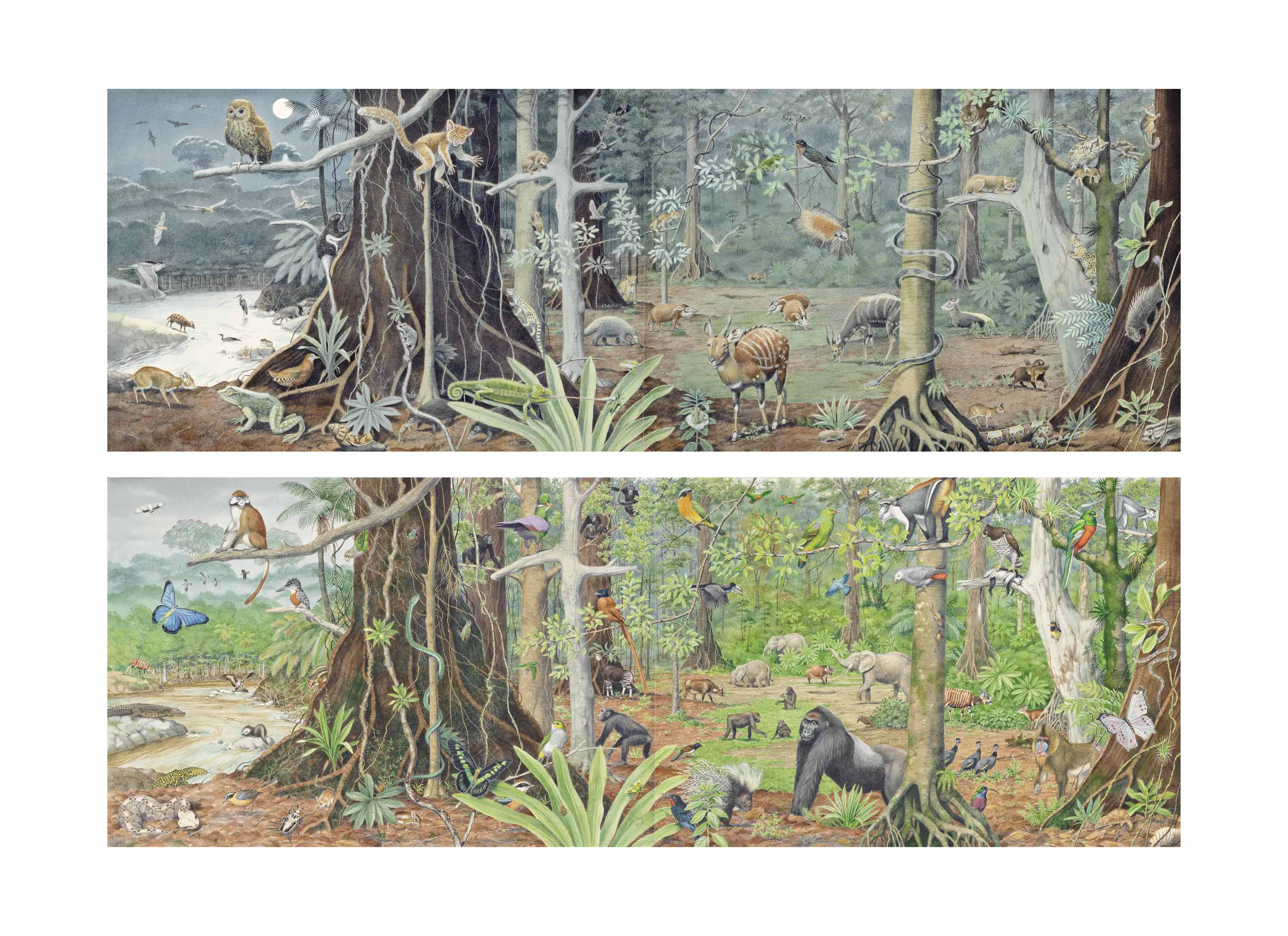 African Jungle: Night and Day - two diptychs