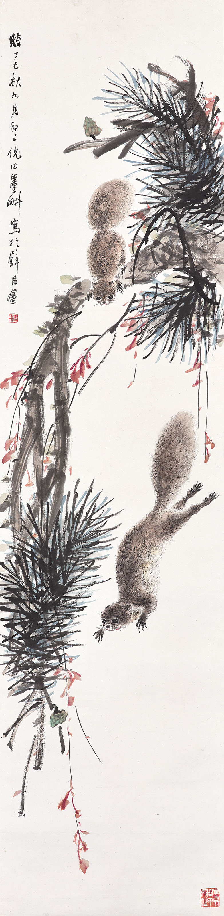 Pine and Squirrels