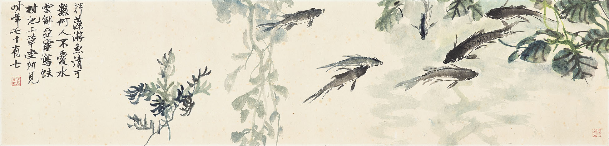 Fish/Shrimp