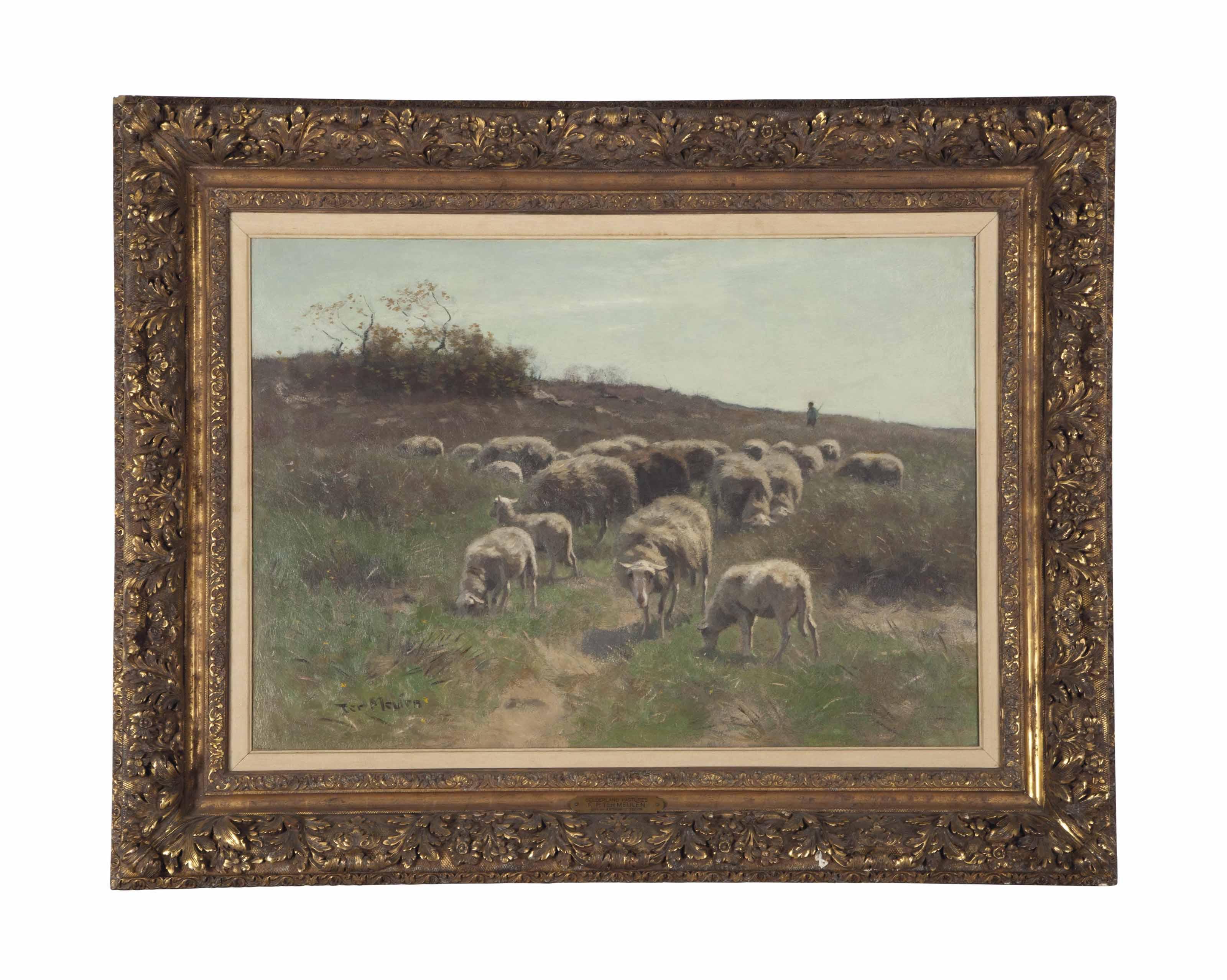 Gelderland Pastures