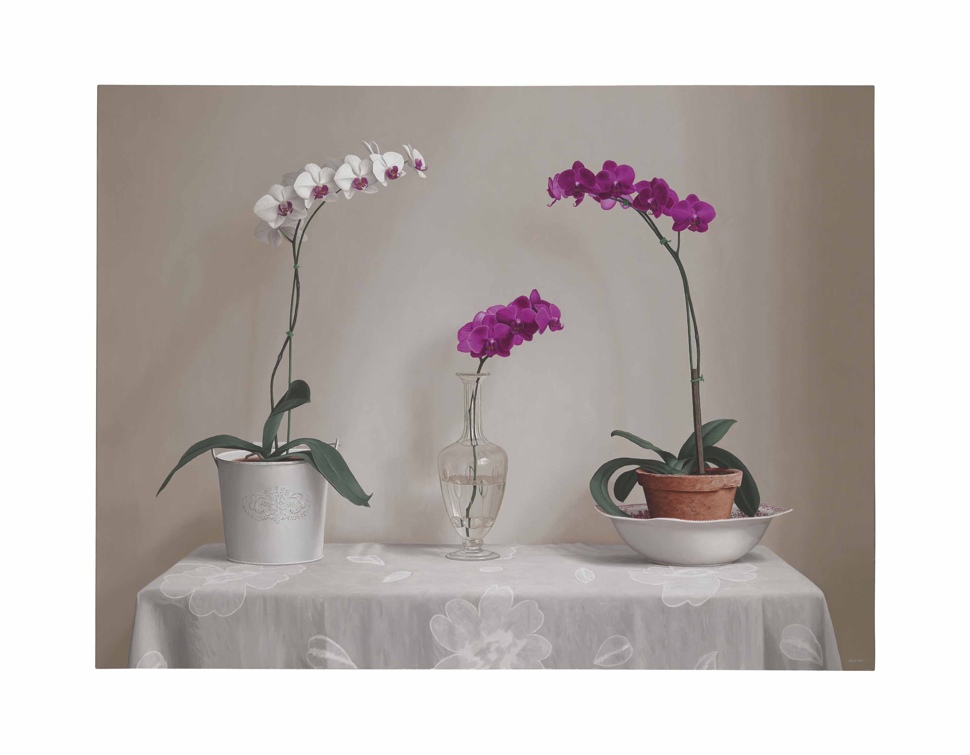 Orchids on a Table