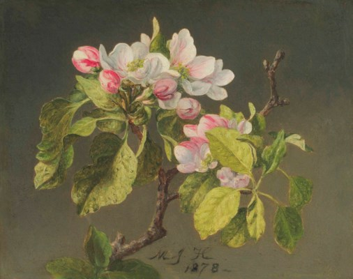 martin johnson heade essay The scattered papers of painter martin johnson heade measure 03 linear feet and date from 1853 to 1904 the bulk of the collection consists of letters from his.