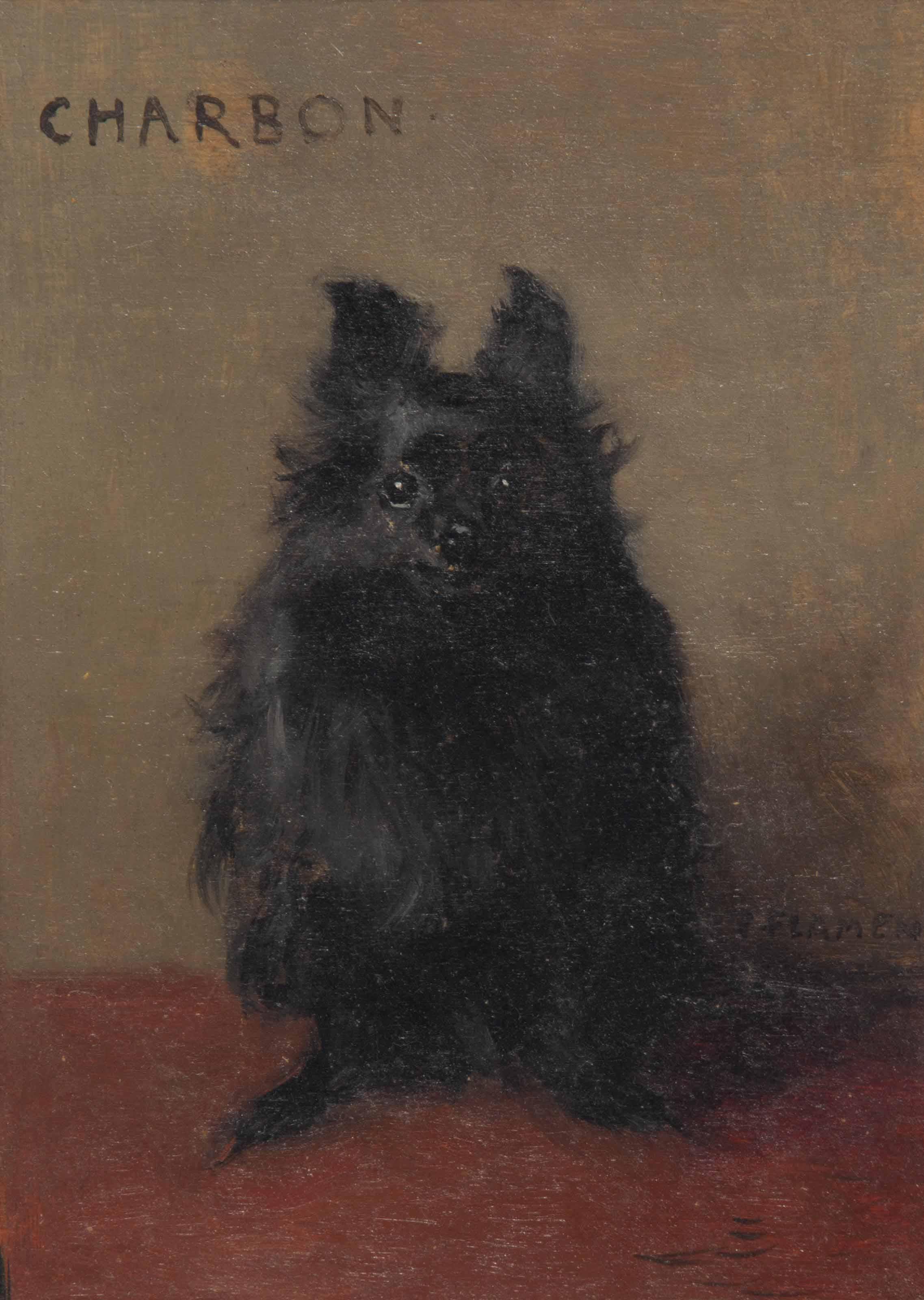'Charbon': Portrait of a Dog