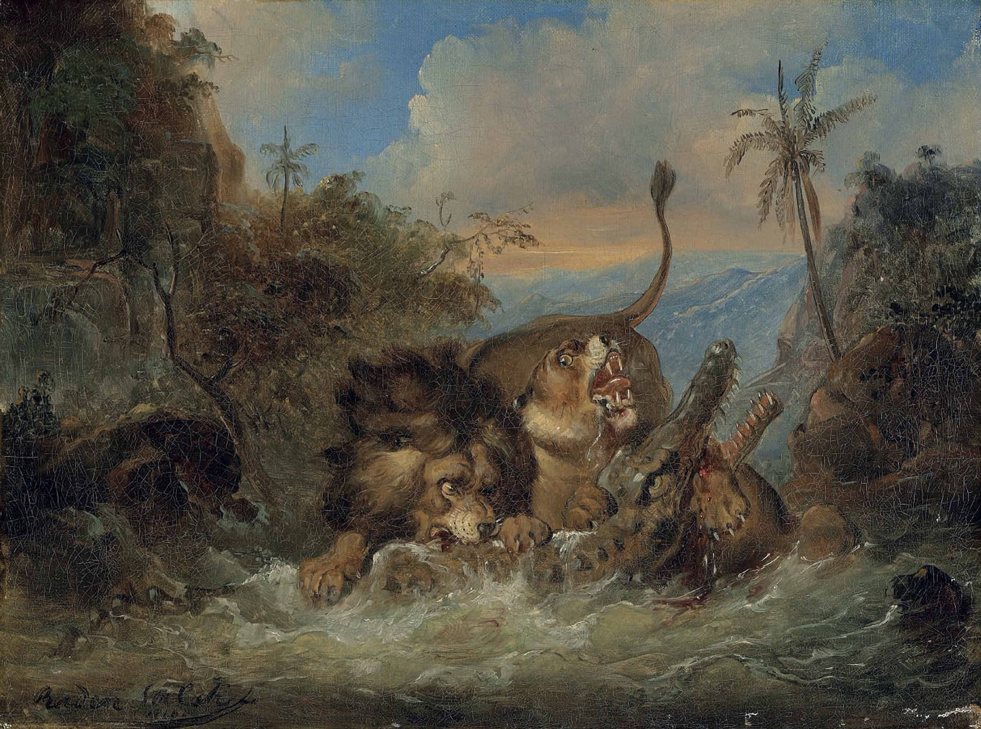 A lion and lioness attacking a crocodile