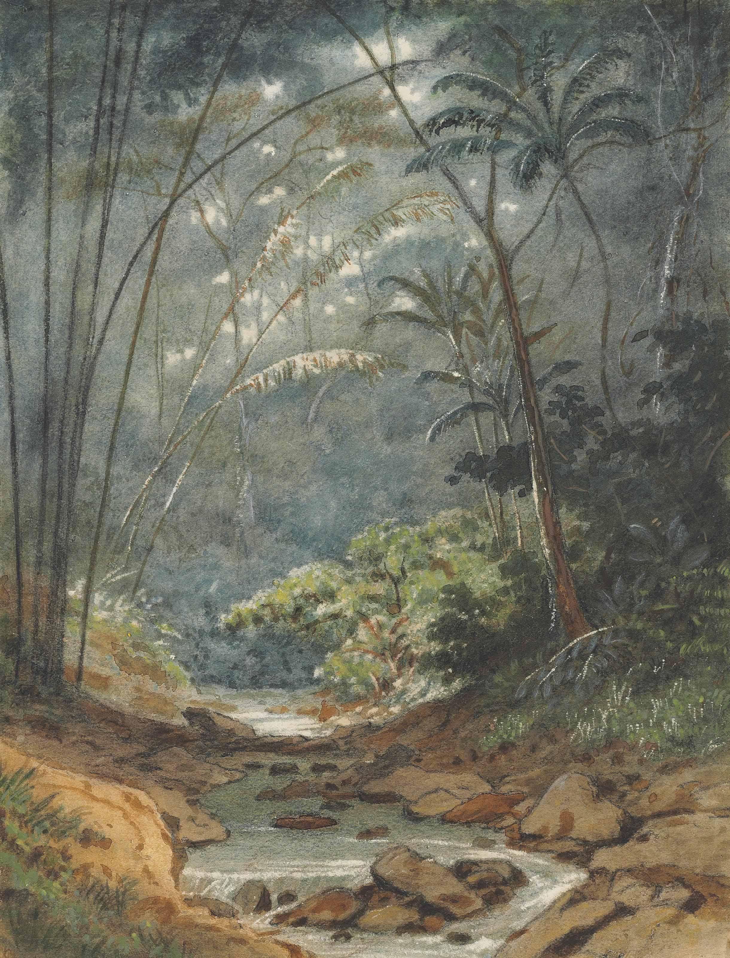 Macaras Valley, Trinidad