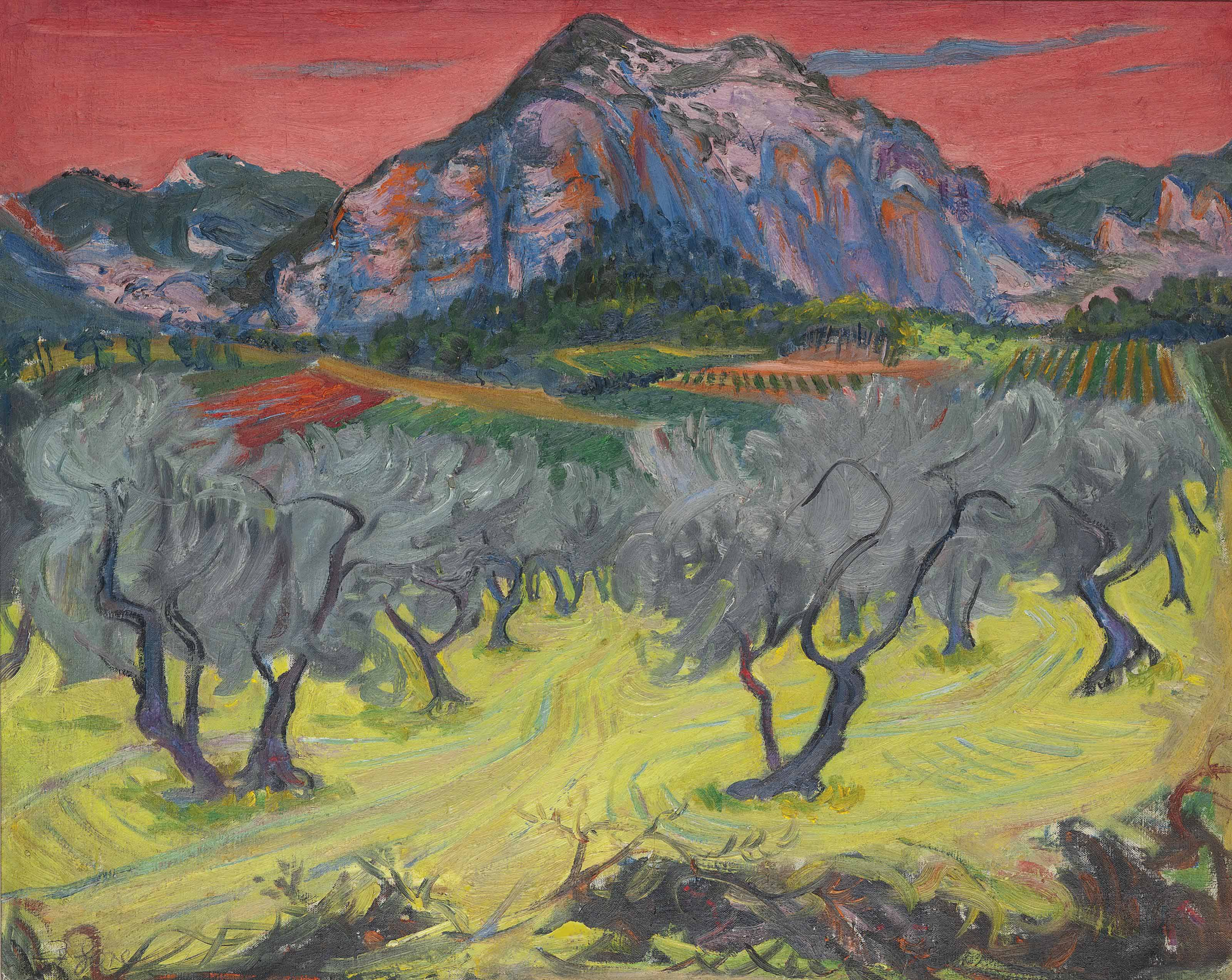 Olive grove with red sky