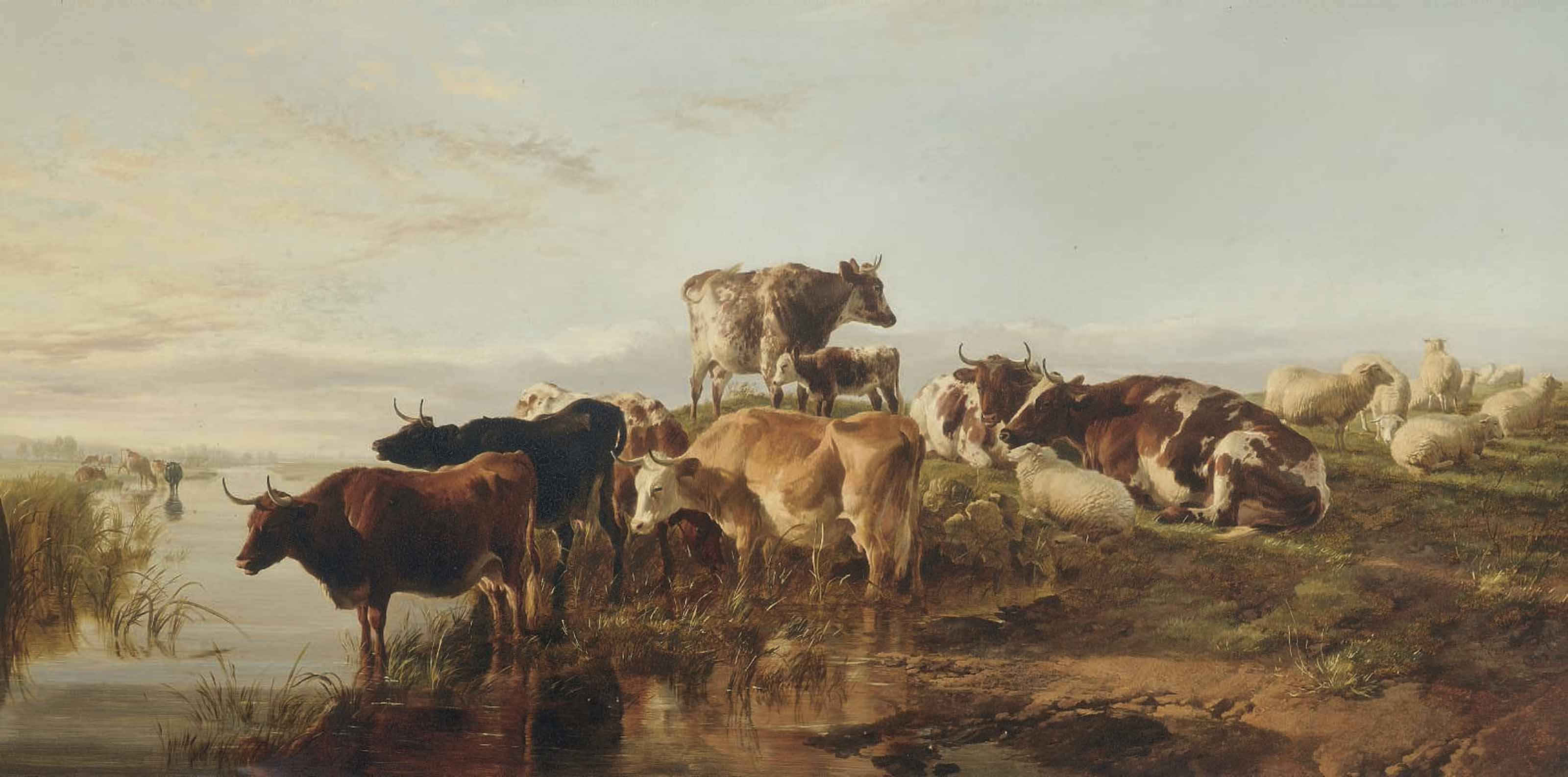 Cattle and sheep near a river