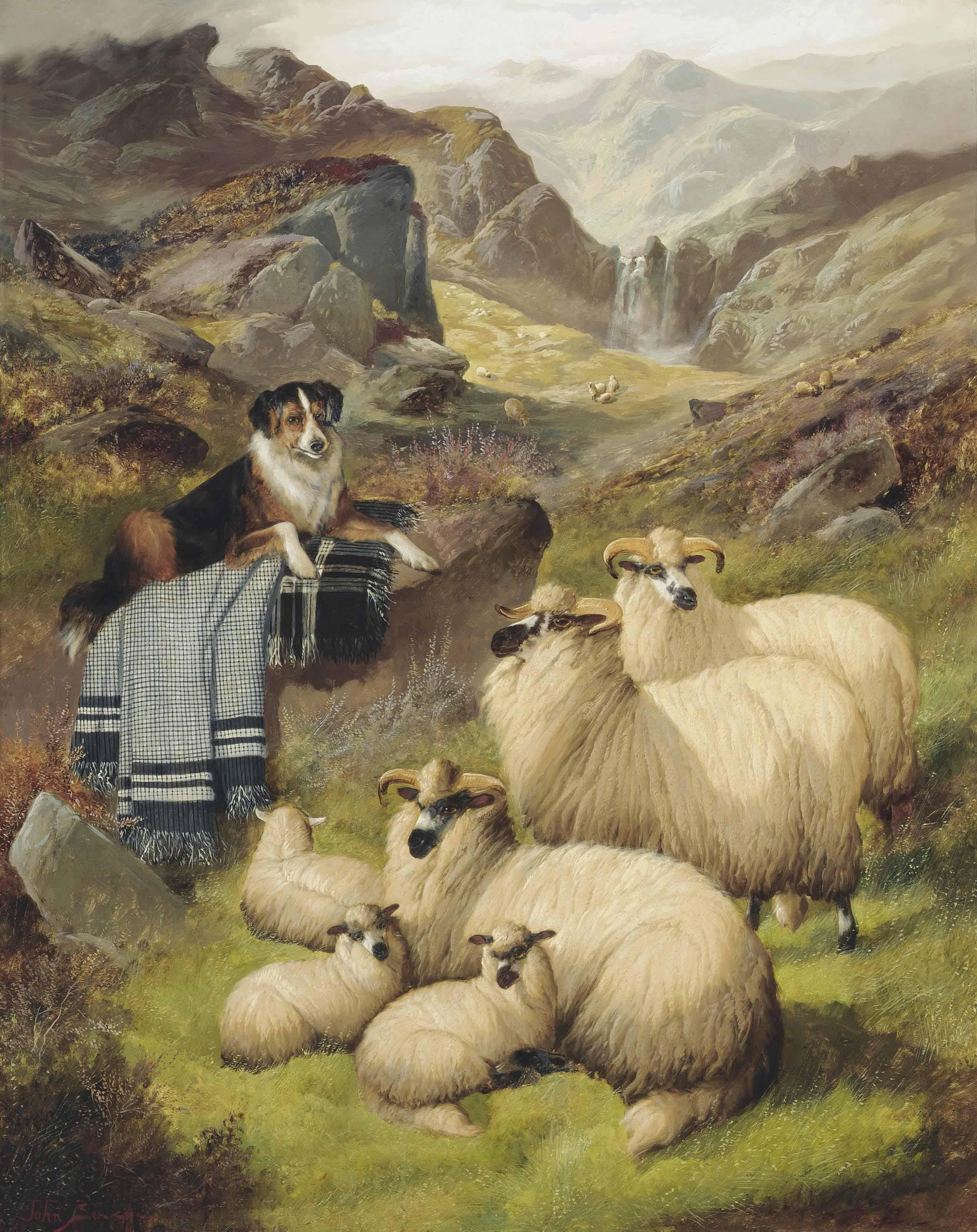 Guarding the sheep