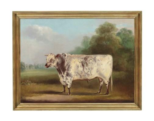 William Henry Davis (fl. 1803-