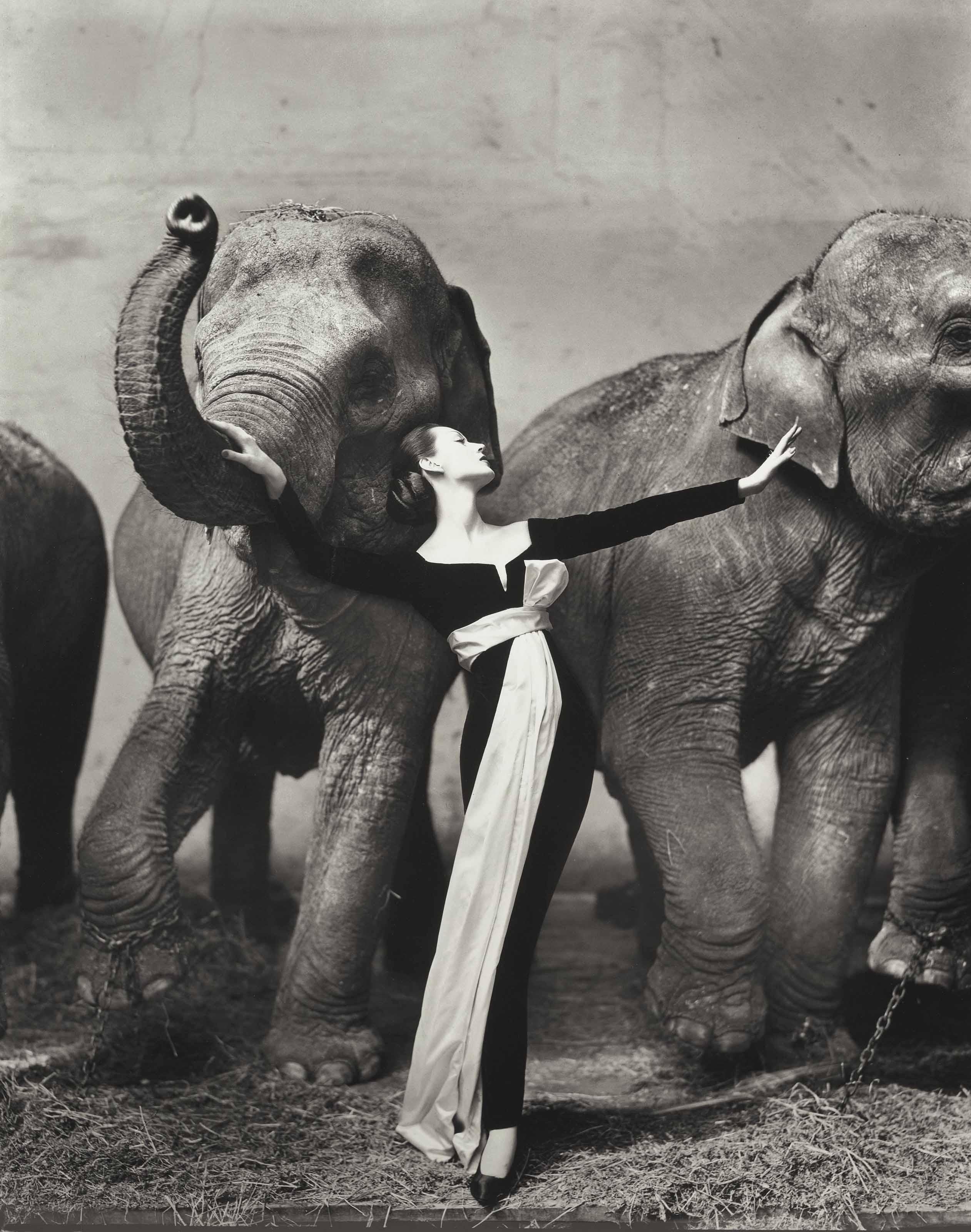 Dovima with Elephants, Evening dress by Dior, Cirque d'Hiver, Paris, 1955