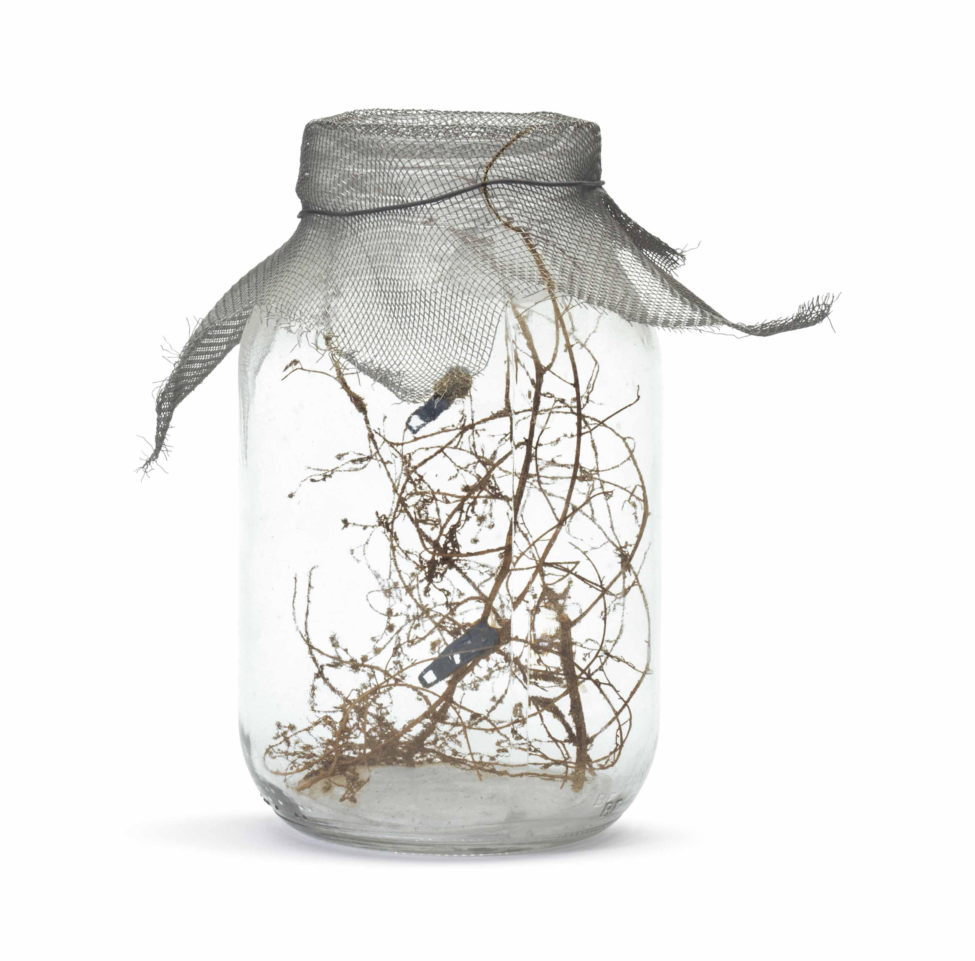 Fly Jar