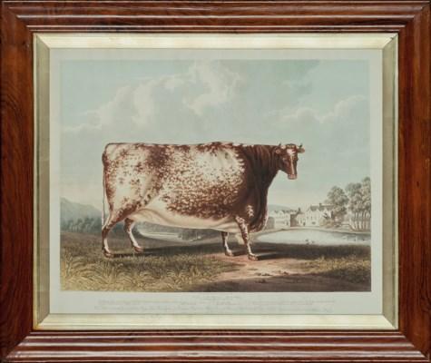 Richard Gilson Reeve (1803-188