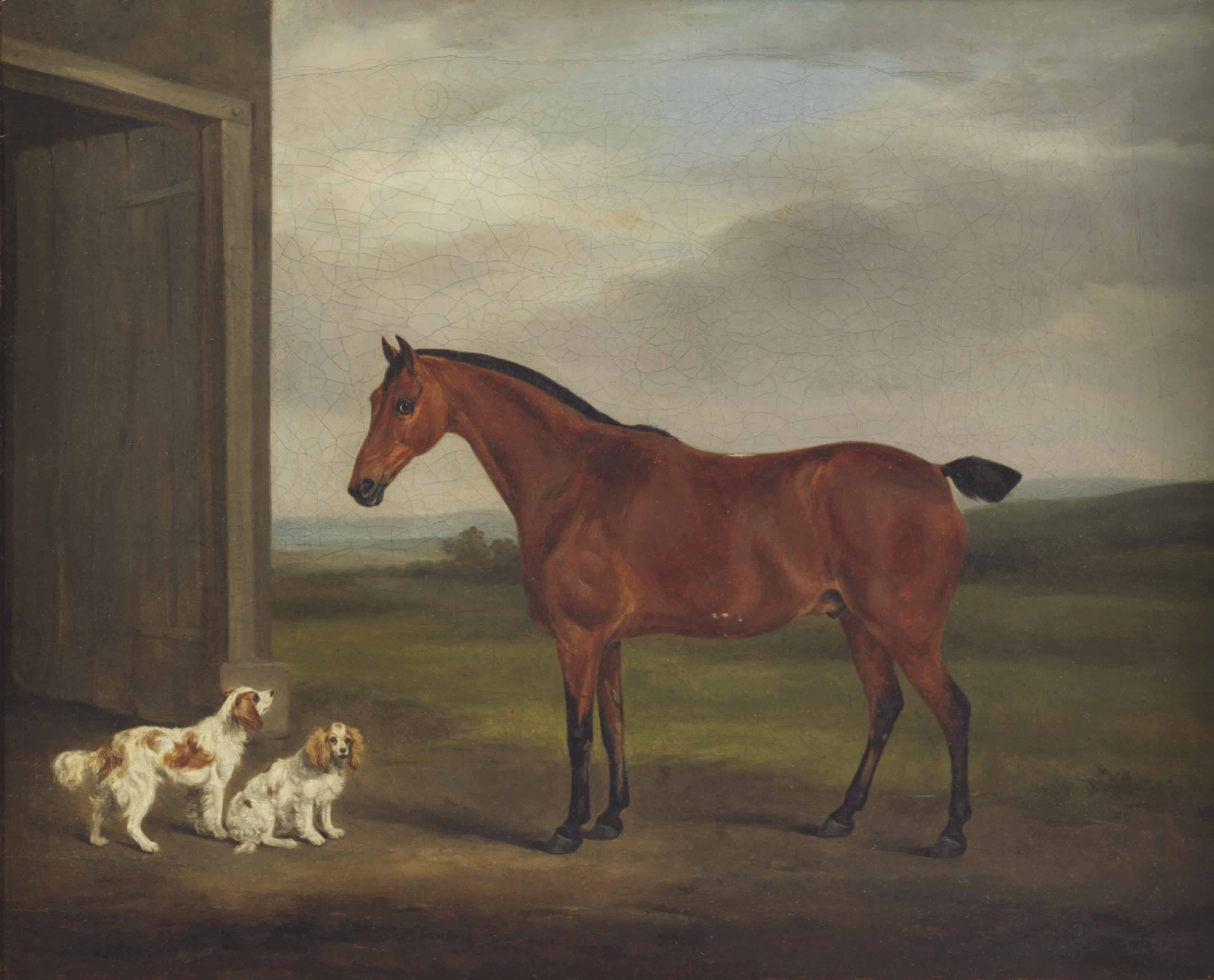 A chestnut mare and two spaniels before a stable door