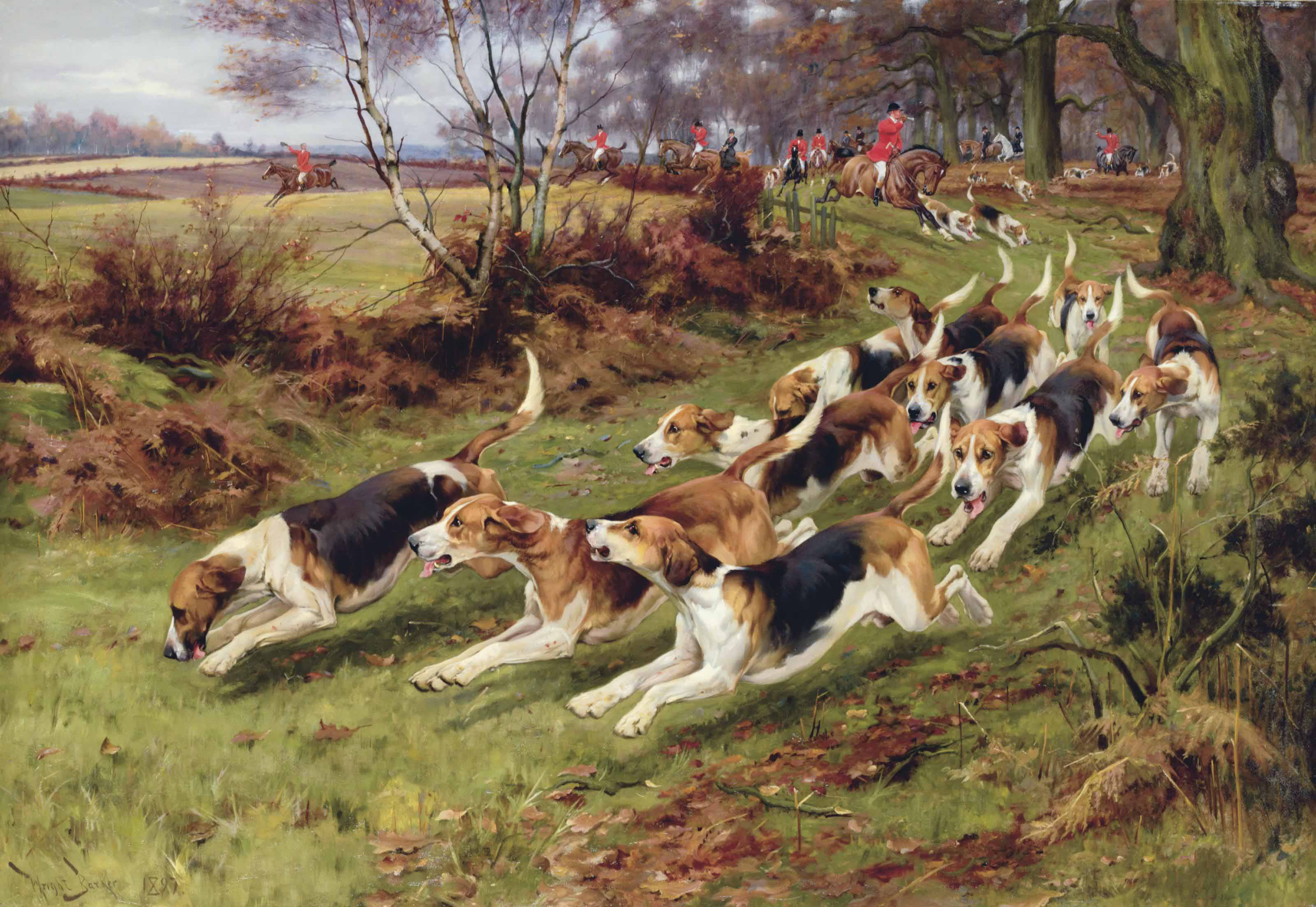 Gone Away, The Rufford Hounds Breaking Cover in Sherwood Forest