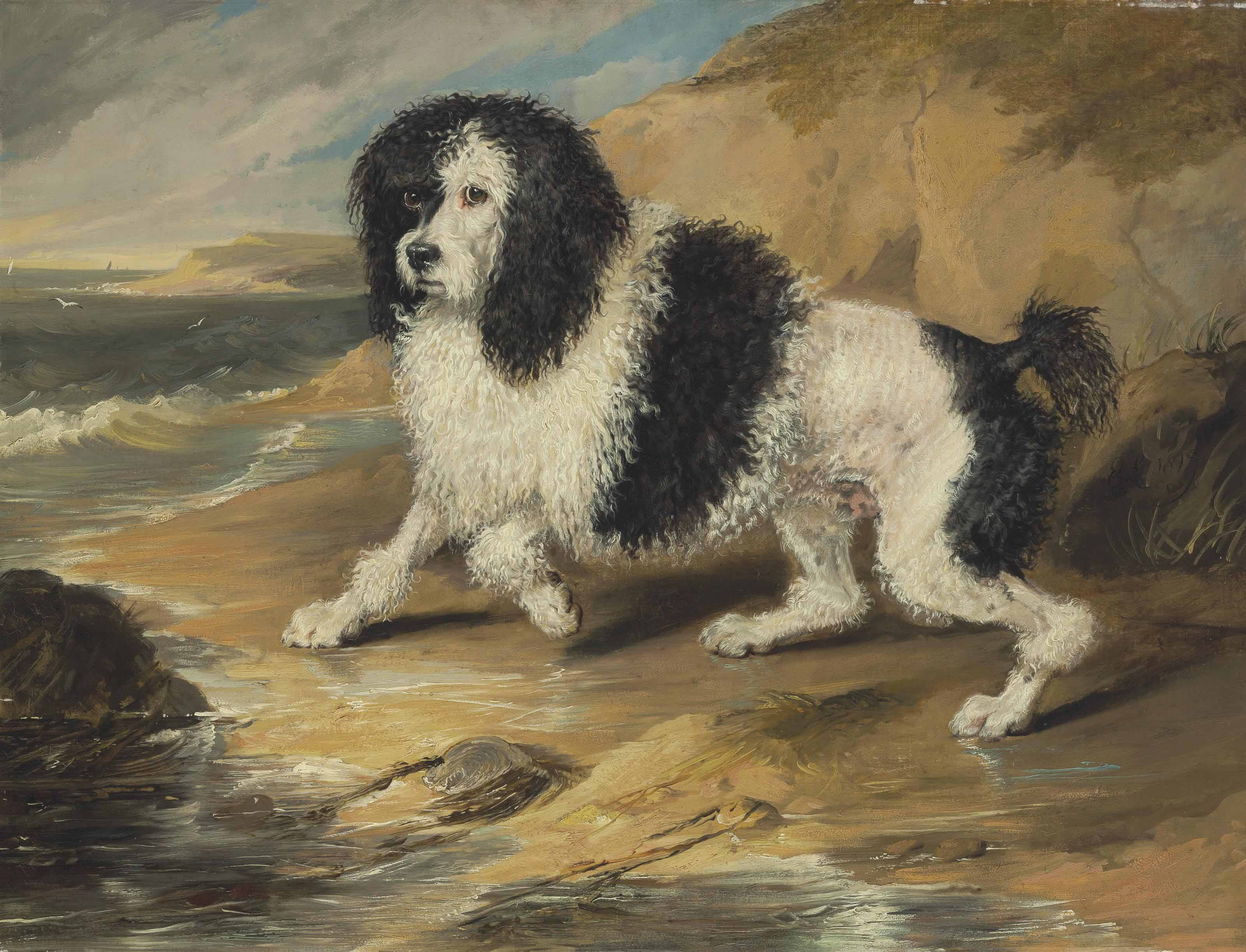 Tapageur, the Poodle belonging to the Honorable Frederick Byng