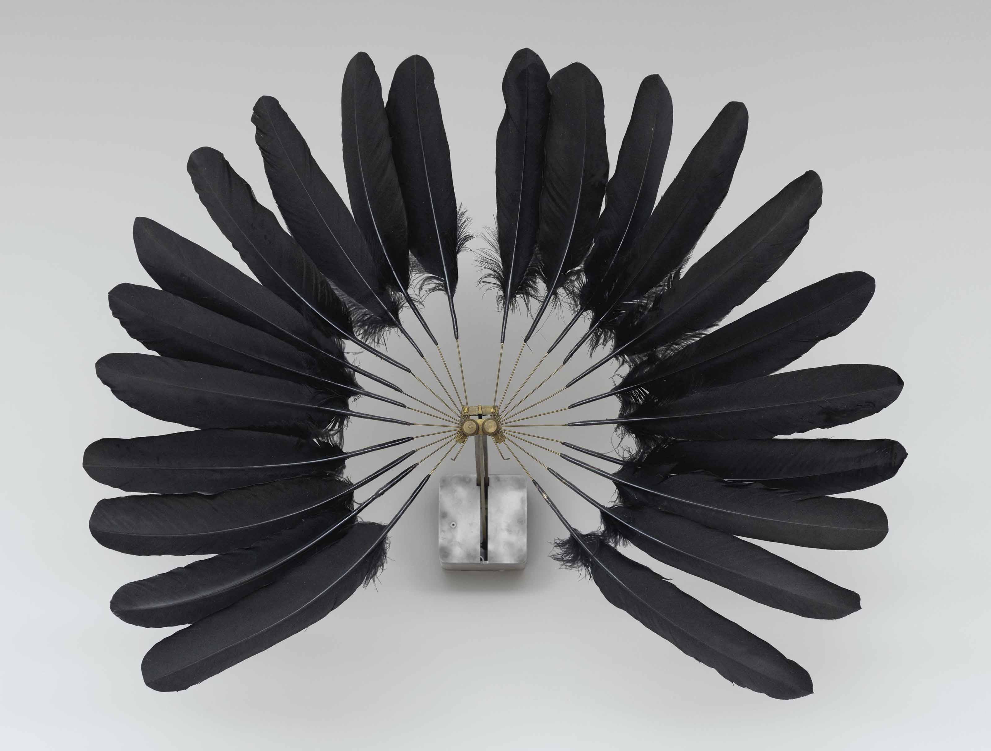 Die Kleine Witwe, Schwarzer Federflügel (The Little Widow, Black Feathers)