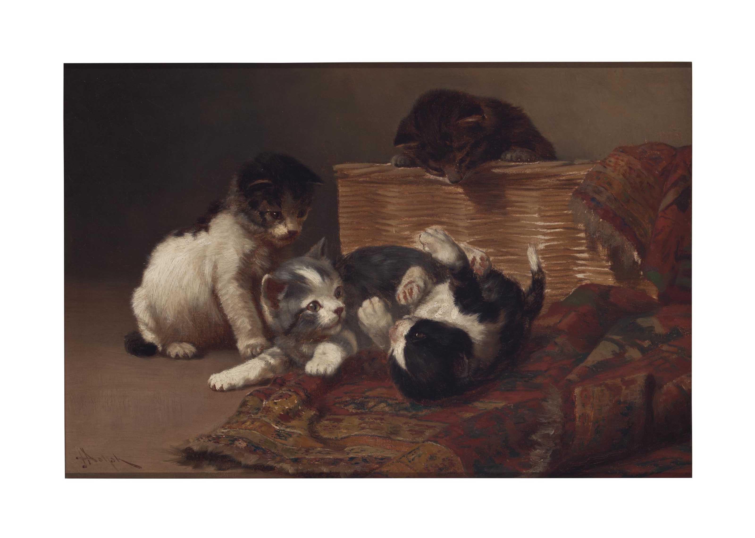 Kittens At Play