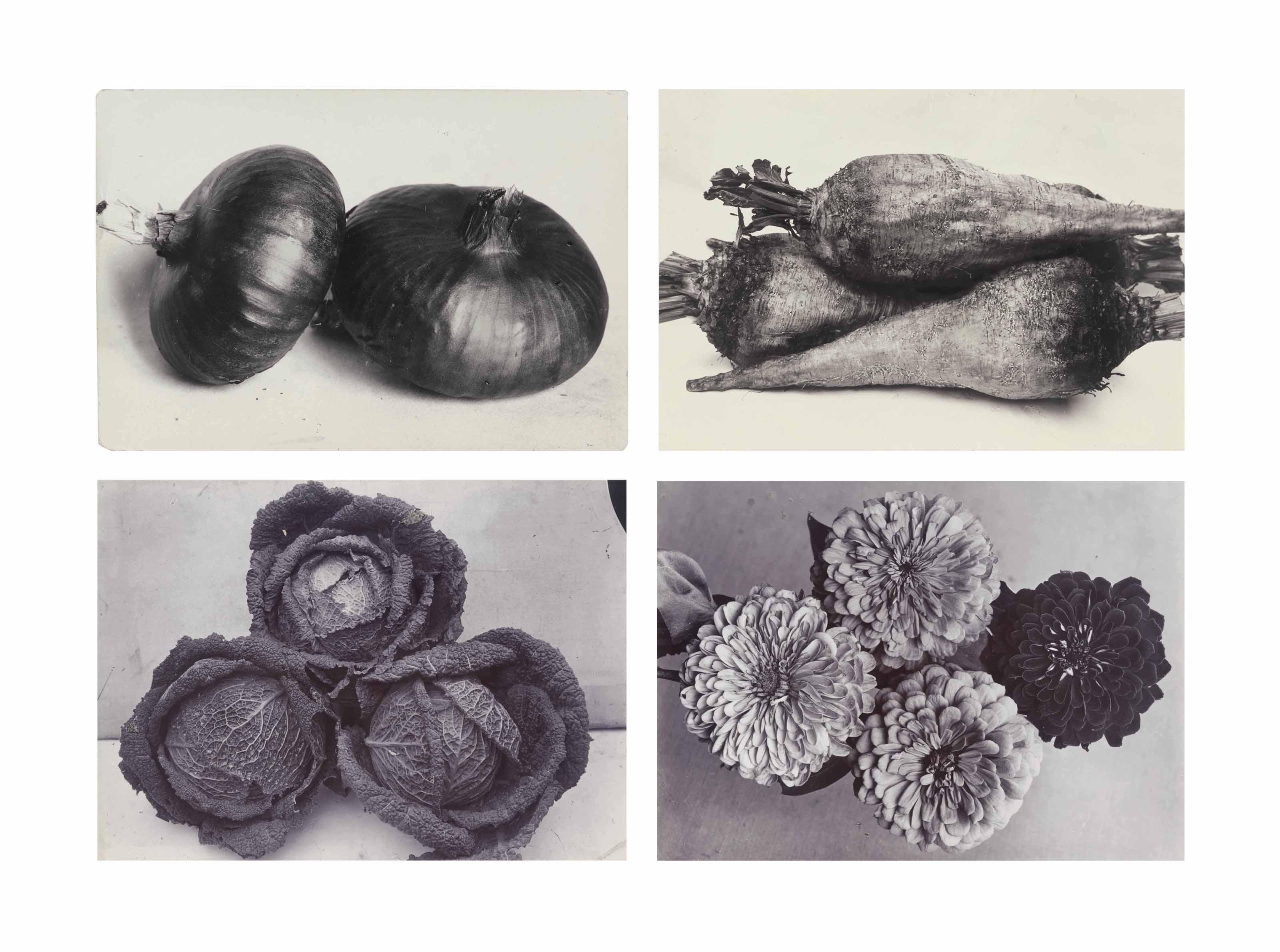 Various garden images, c. 1900