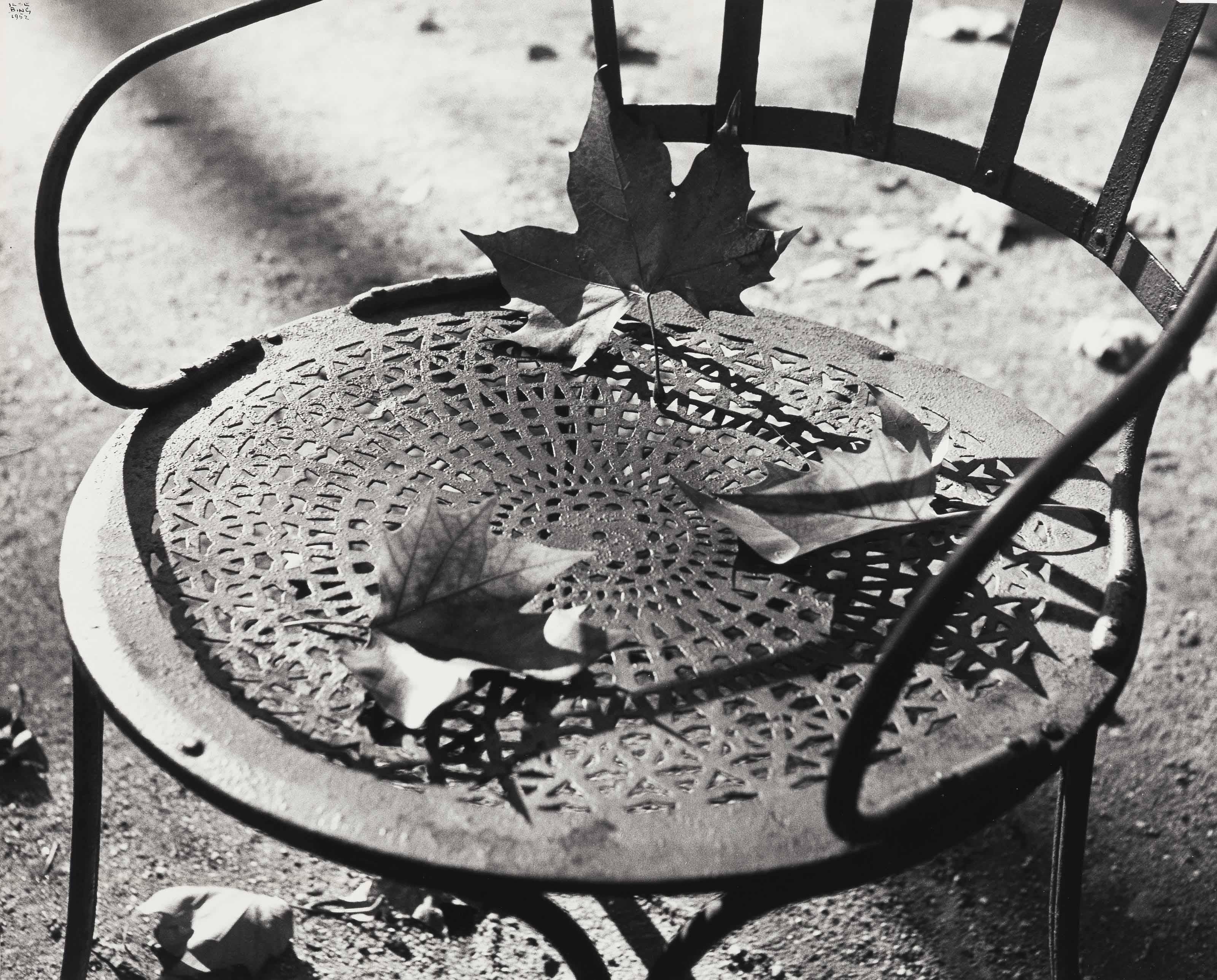 Chair with Dead Leaves, Jardin de Luxembourg, Paris, 1952