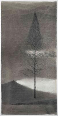SHEN QIN (B. 1958)