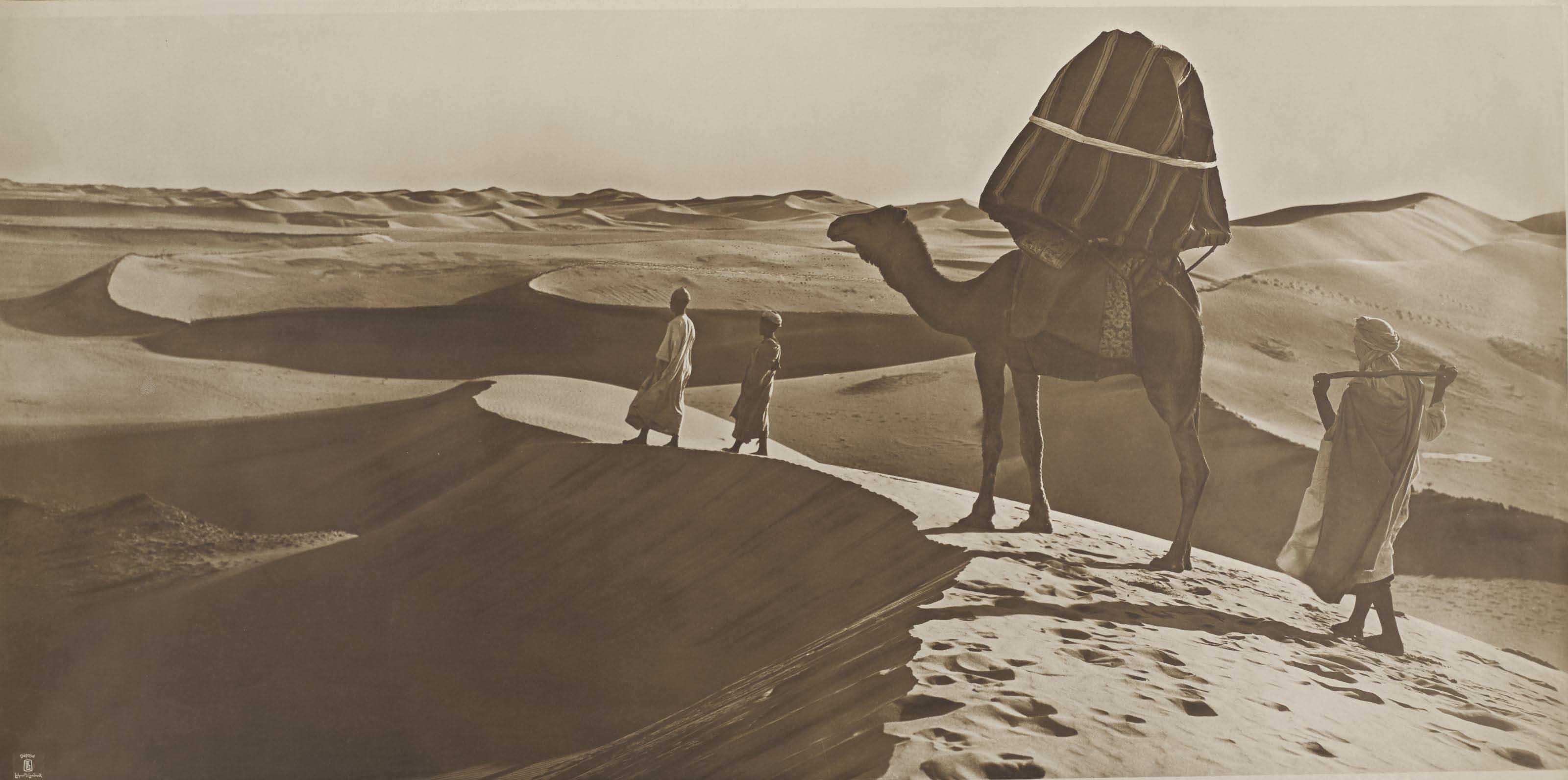 Vues panoramiques du désert, Afrique du Nord, vers 1905-1910