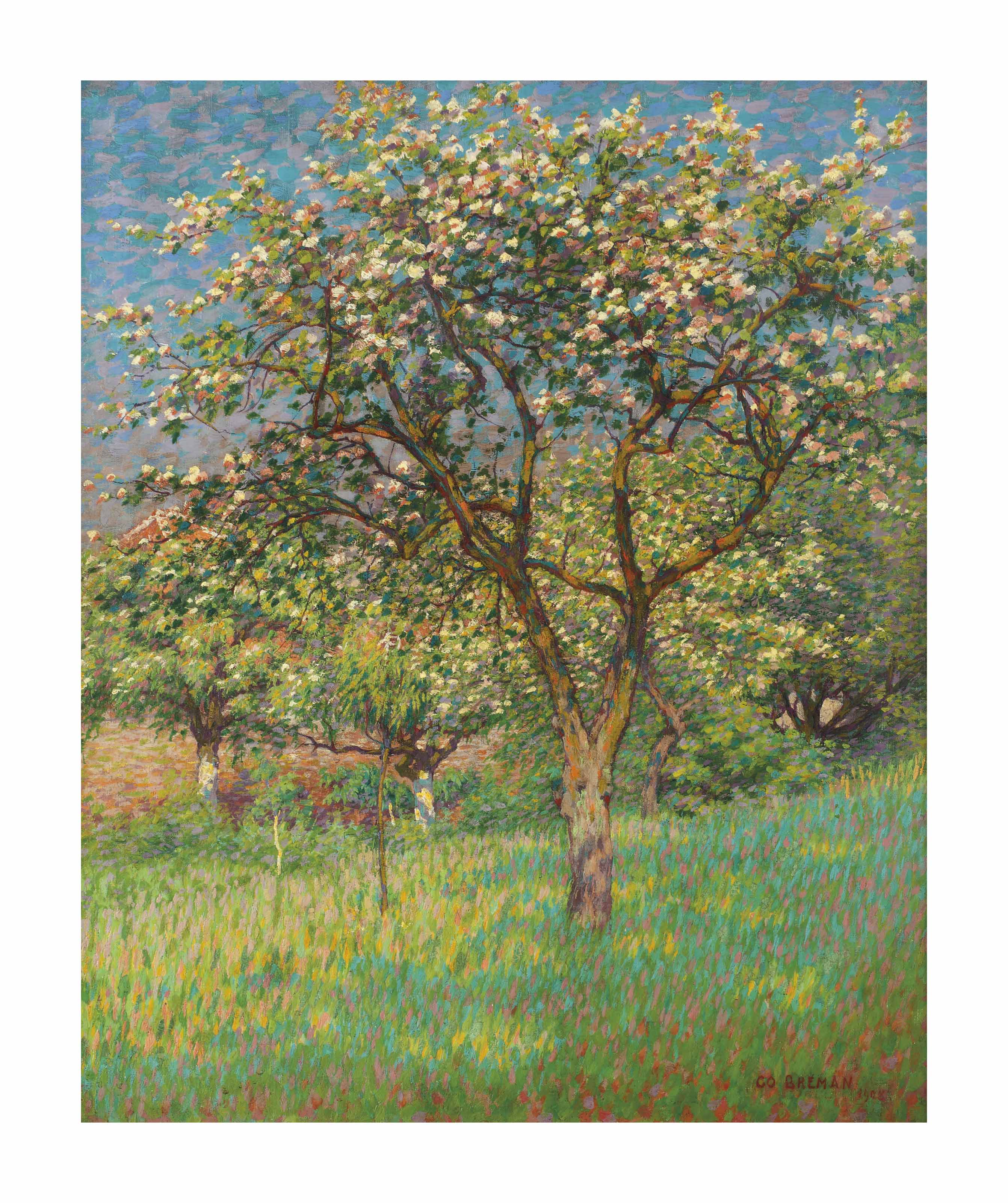 Blossoming trees in Het Gooi
