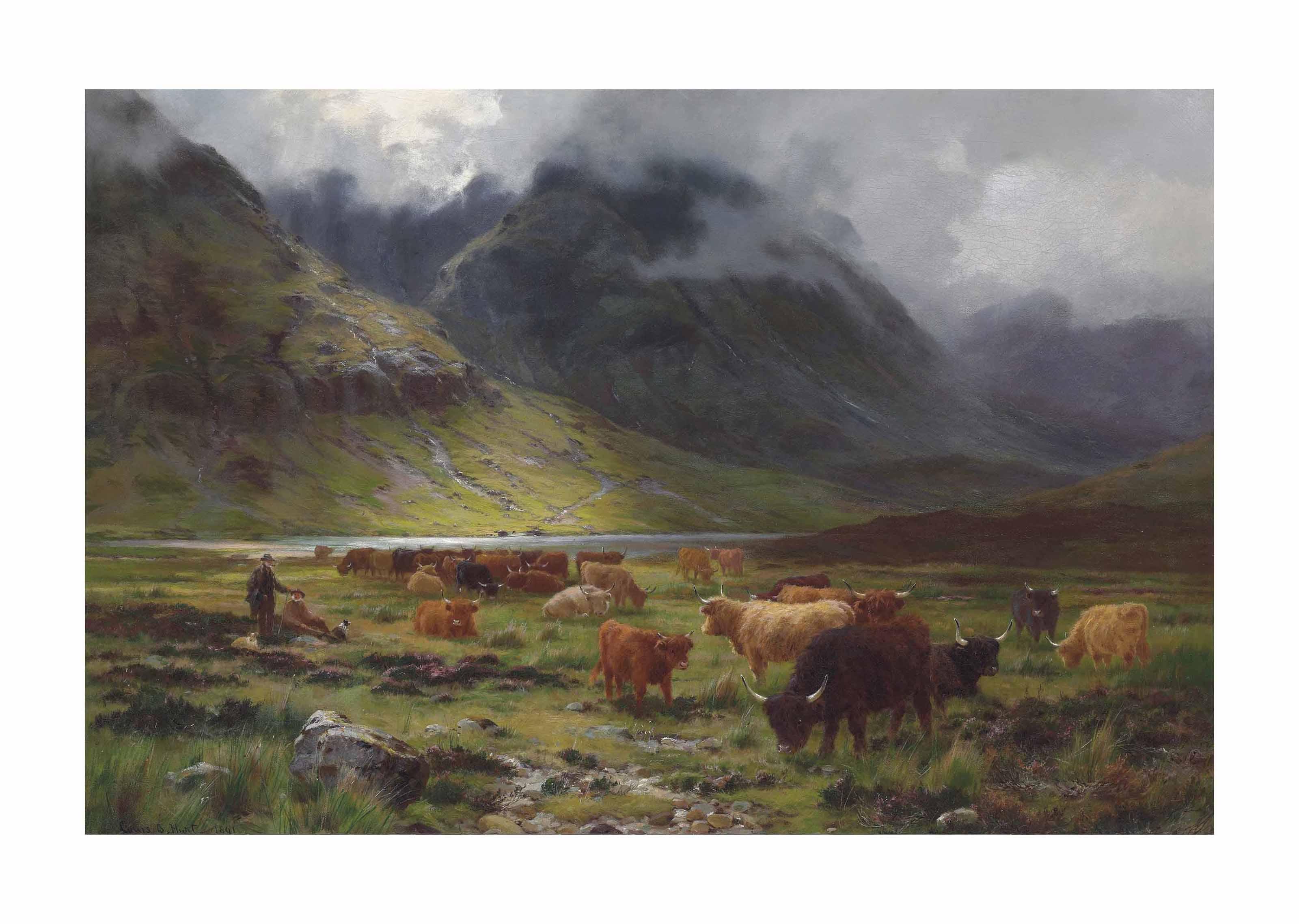 Highland cattle in a glen
